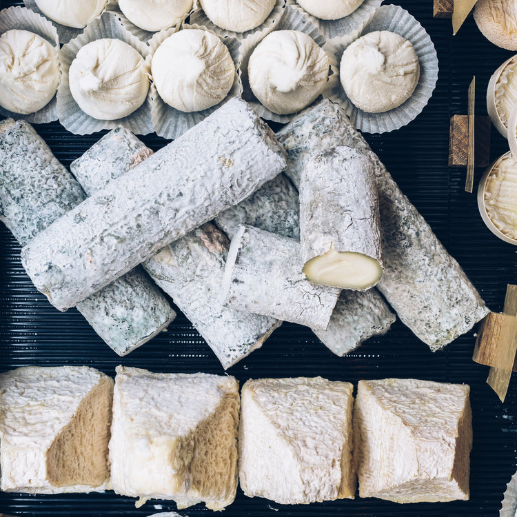 cheeses-1.jpg