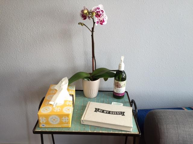 guest-table-bams.JPG