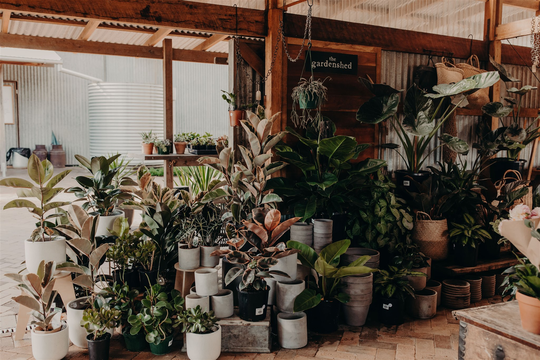 the shed - Here, amongst the lush indoor plants, gardening books and tools, you'll likely find us, hands in a tray of soil, sharing our tips for incorporating sustainable gardening practice into your garden, or musing on the wonders of slow living.