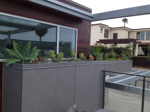 roof garden .JPG