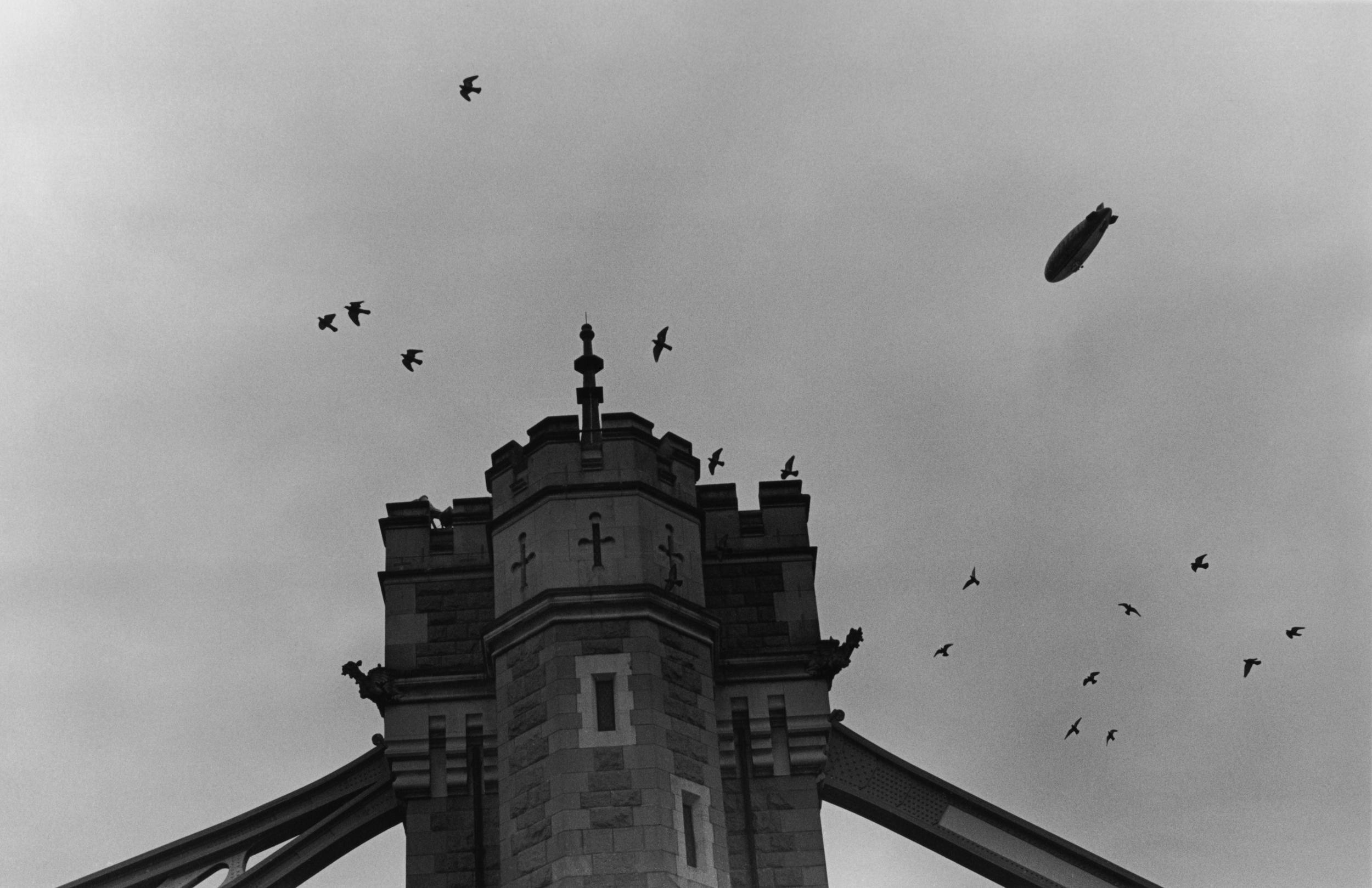 thetower.jpg