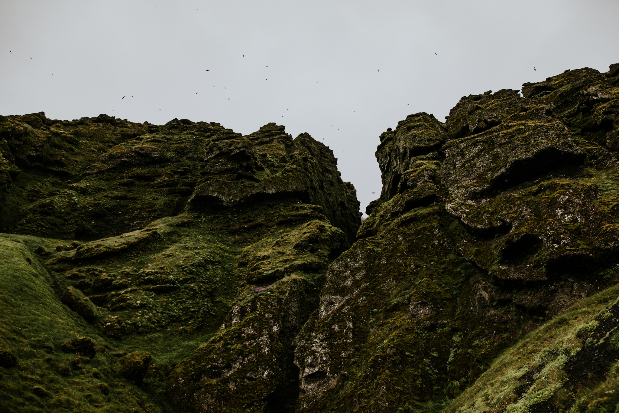 Iceland Wedding Photographer - Vow of the Wild