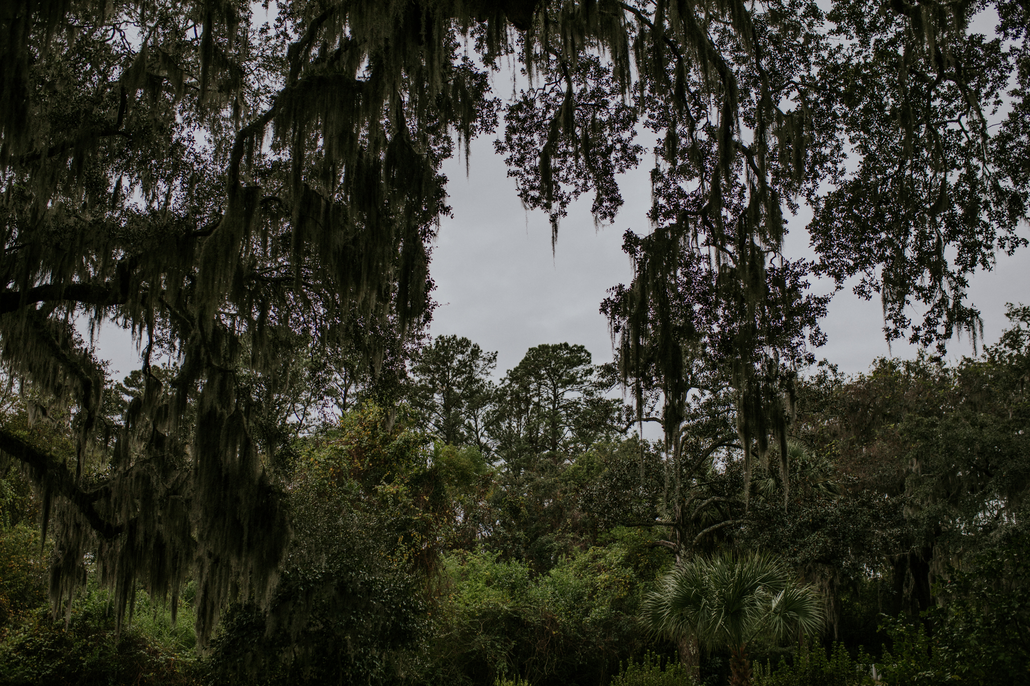 Bonaventure Cemetery - Savannah Georgia Travel - Destination Elopement Photographer - Vow of the Wild