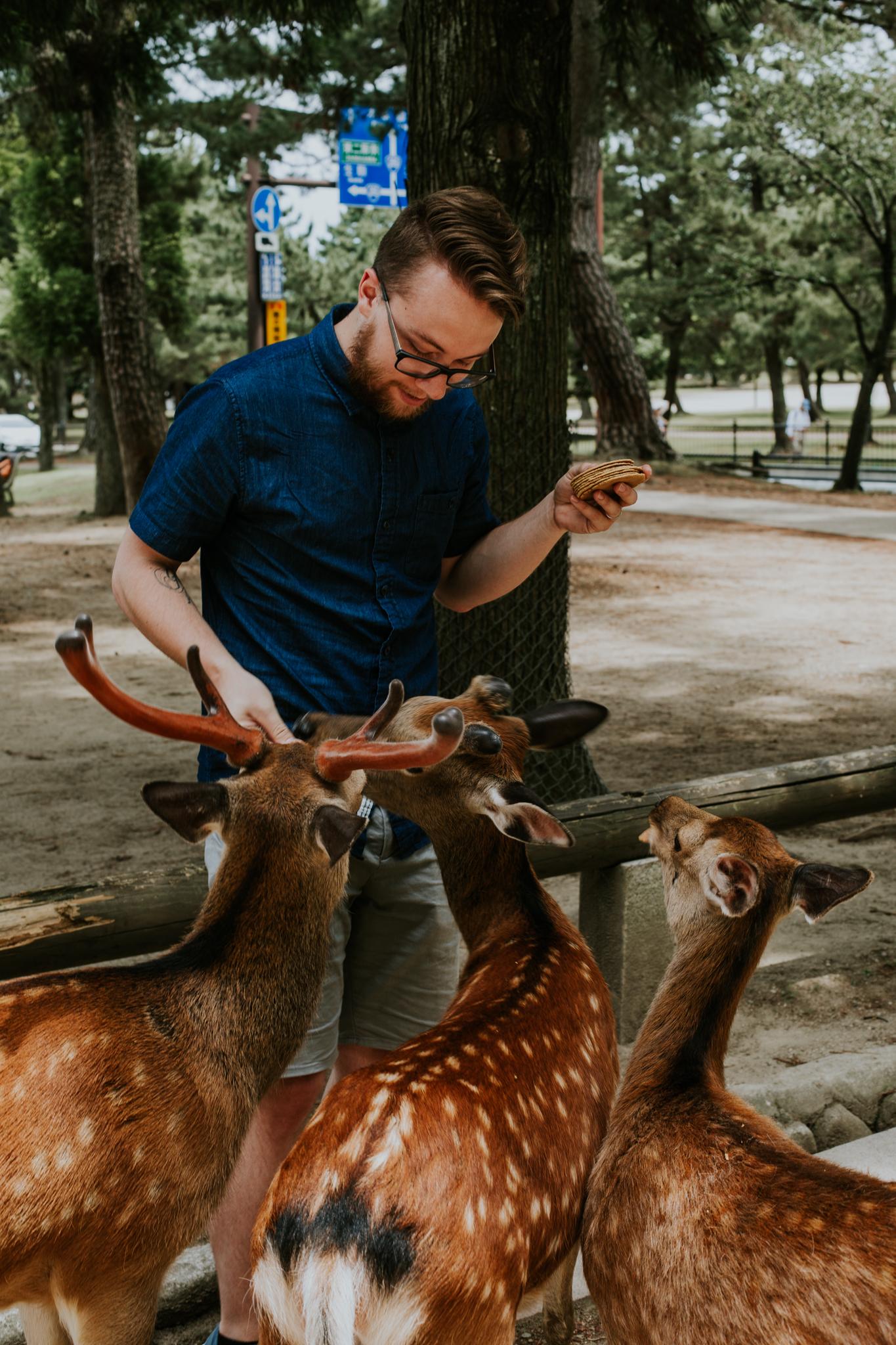 Nara, Japan | Destination Elopement Photographer | Vow of the Wild