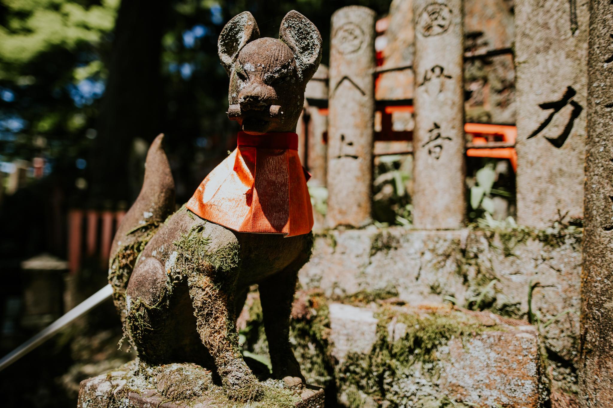 Kyoto, Japan | Destination Elopement Photographer | Vow of the Wild