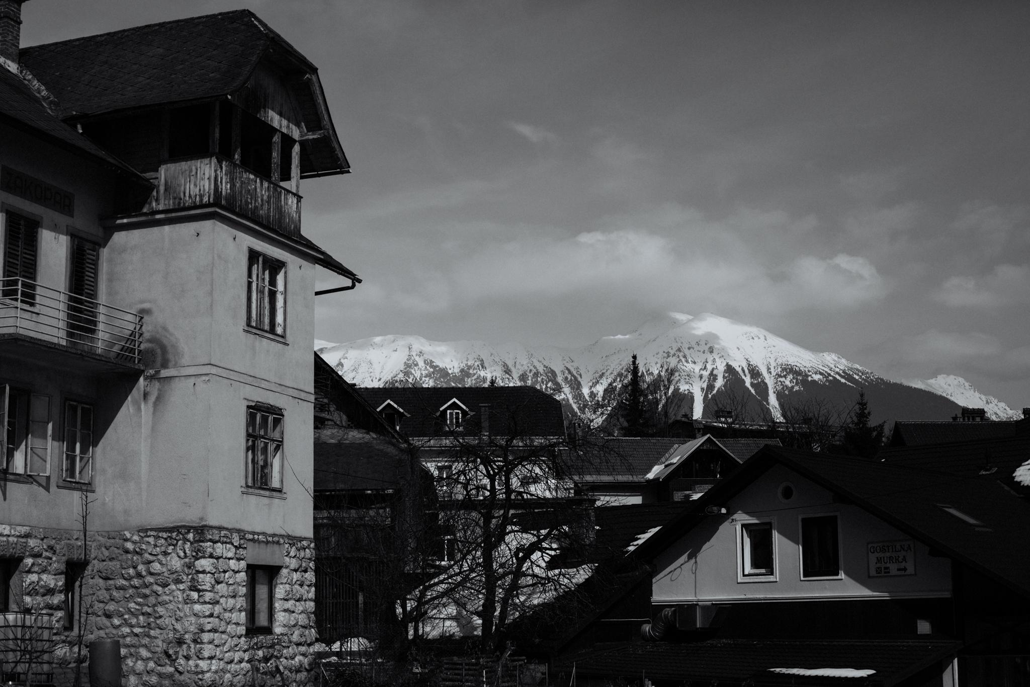 Lake Bled, Slovenia   Destination Elopement Photographer   Vow of the Wild