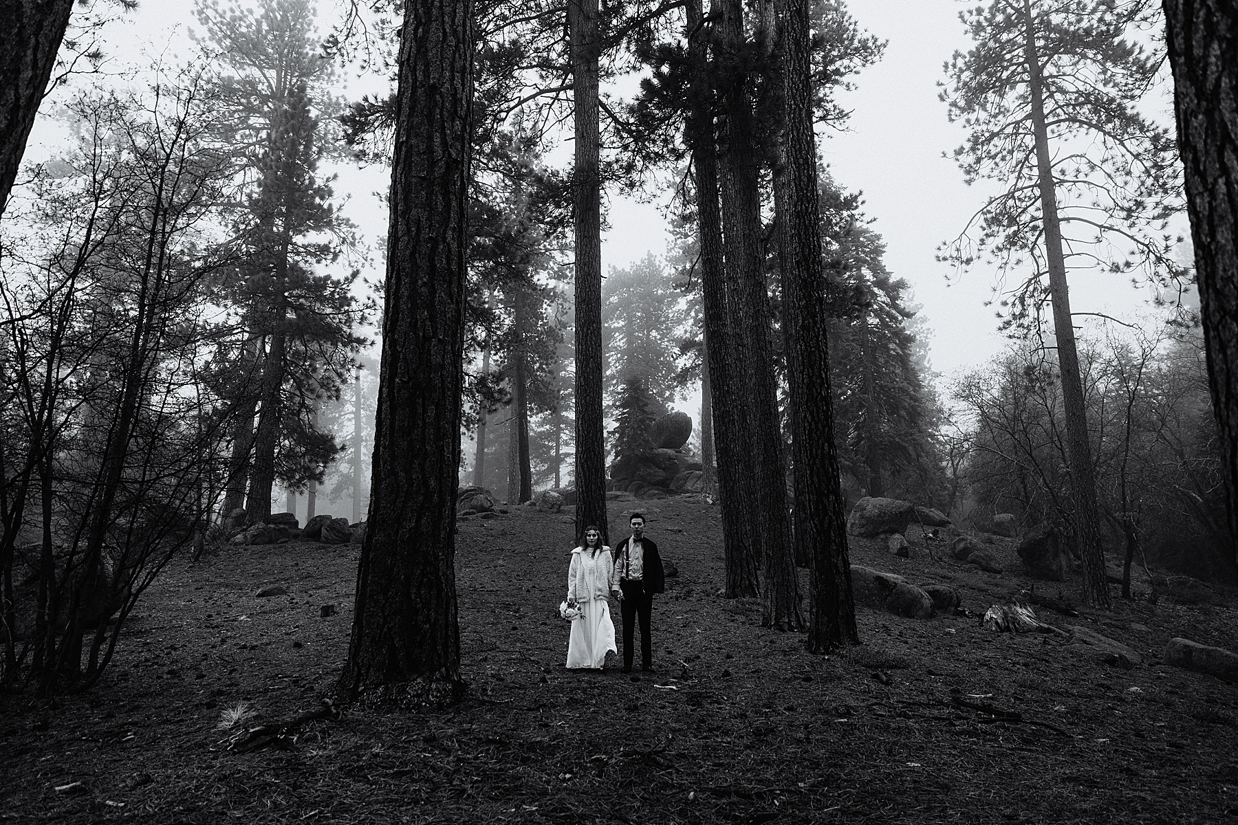 Foggy-California-Forest-Elopement-Photographer079.jpg