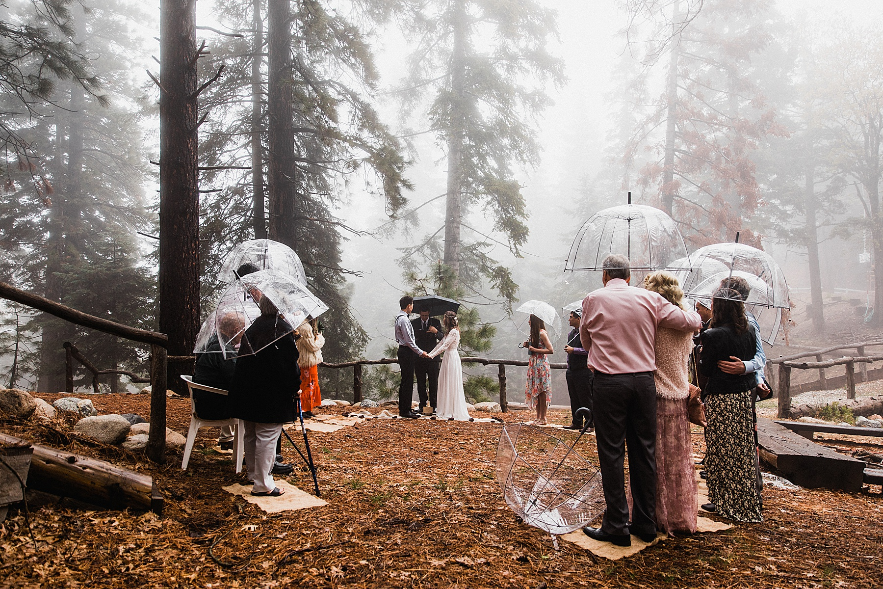 Foggy-California-Forest-Elopement-Photographer039.jpg