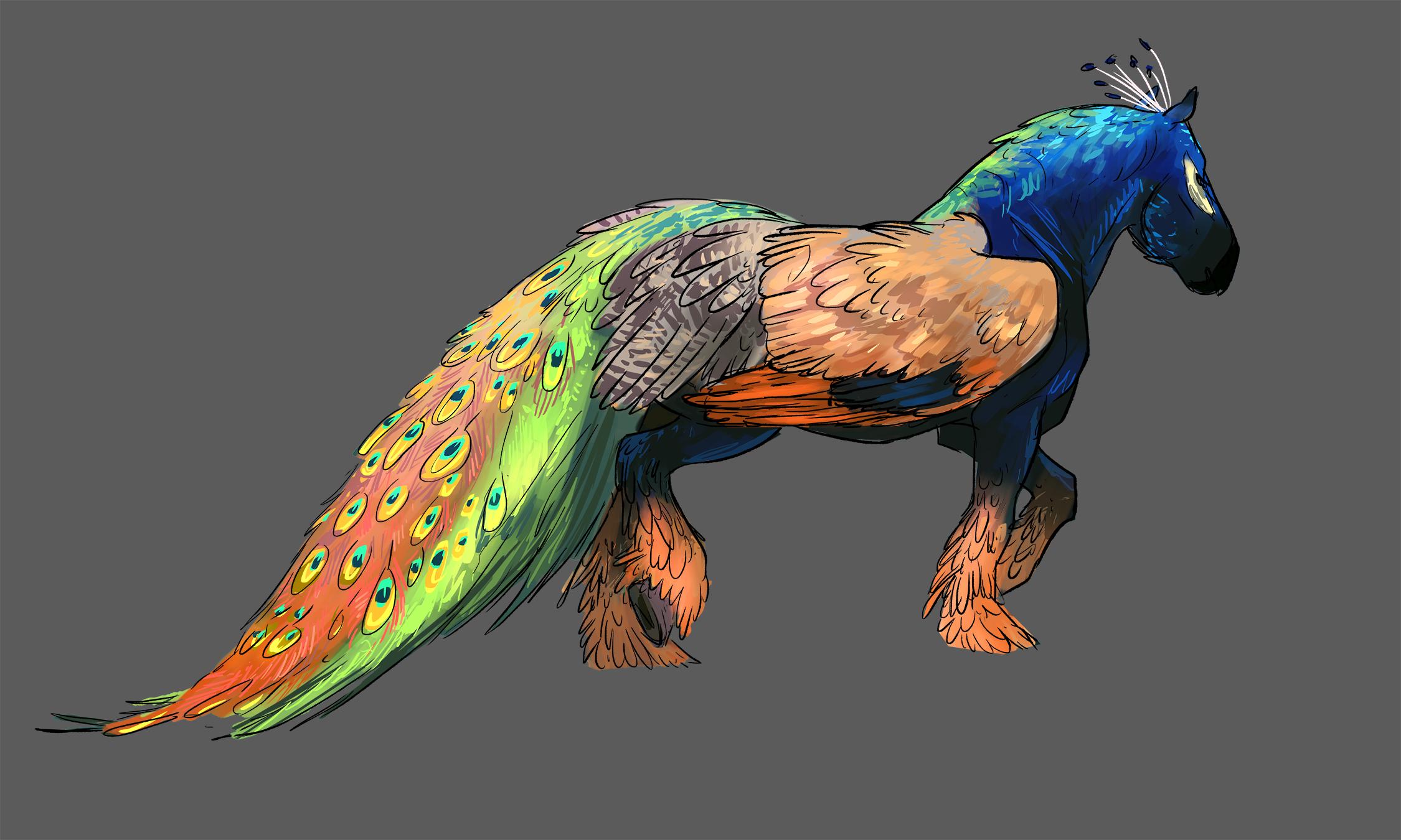 peacock shortwing - web.jpg