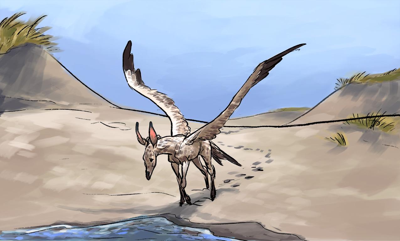 longwing foal 002 - web.jpg