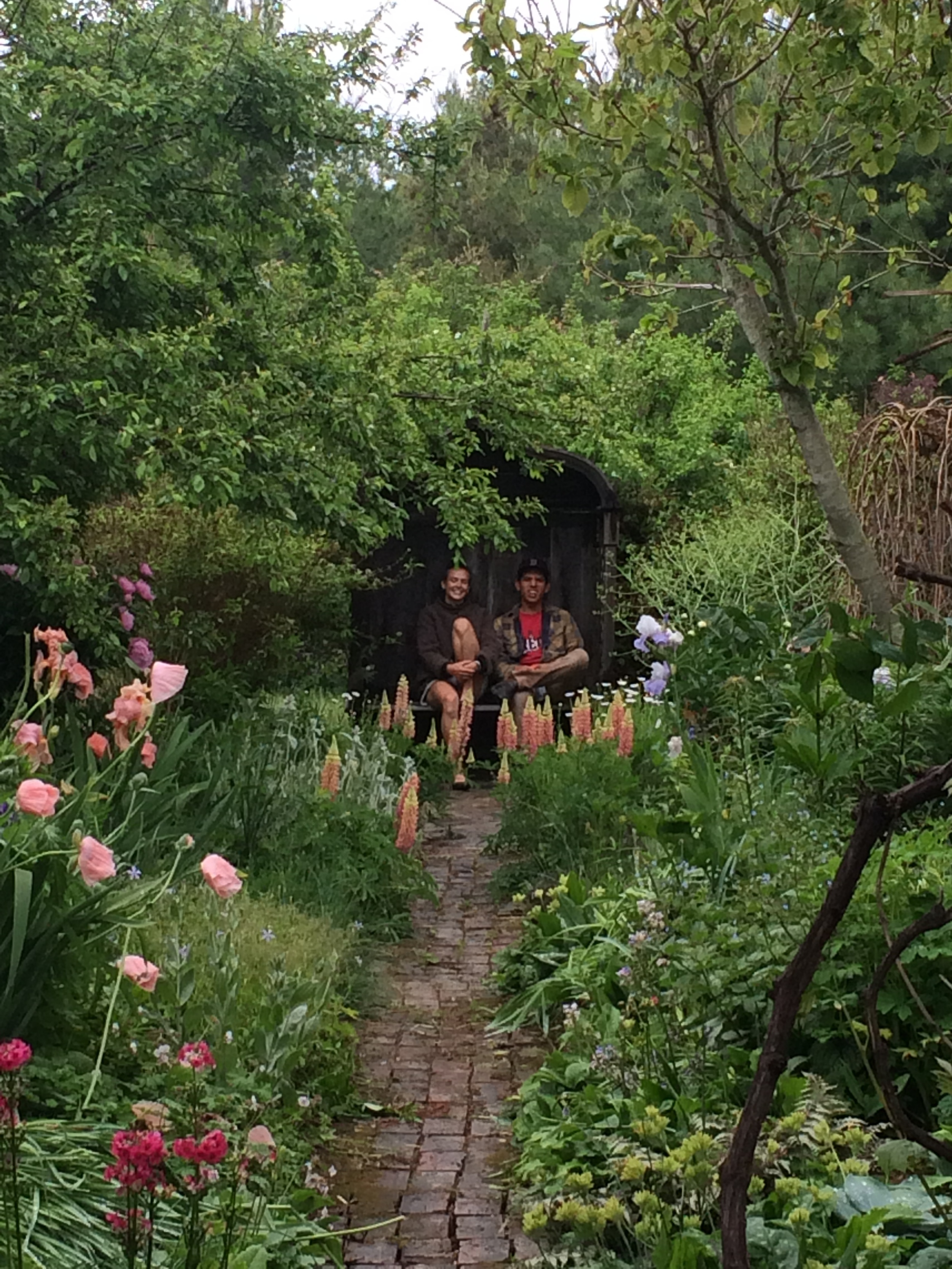 Many a visit to Gillian's magical garden!