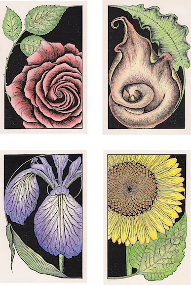 Fibonacci Series  - set of four hand-colored linoleum block prints also available individually