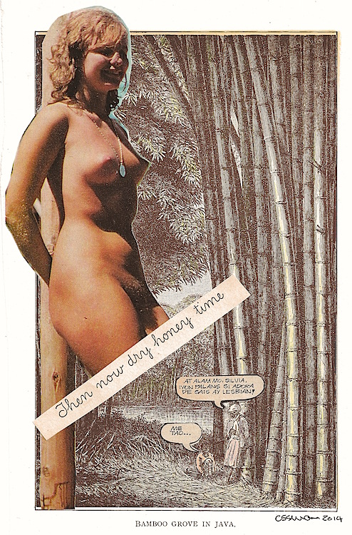 """Dry Honey Time (Sloth)   collage     6.75  x  10"""""""