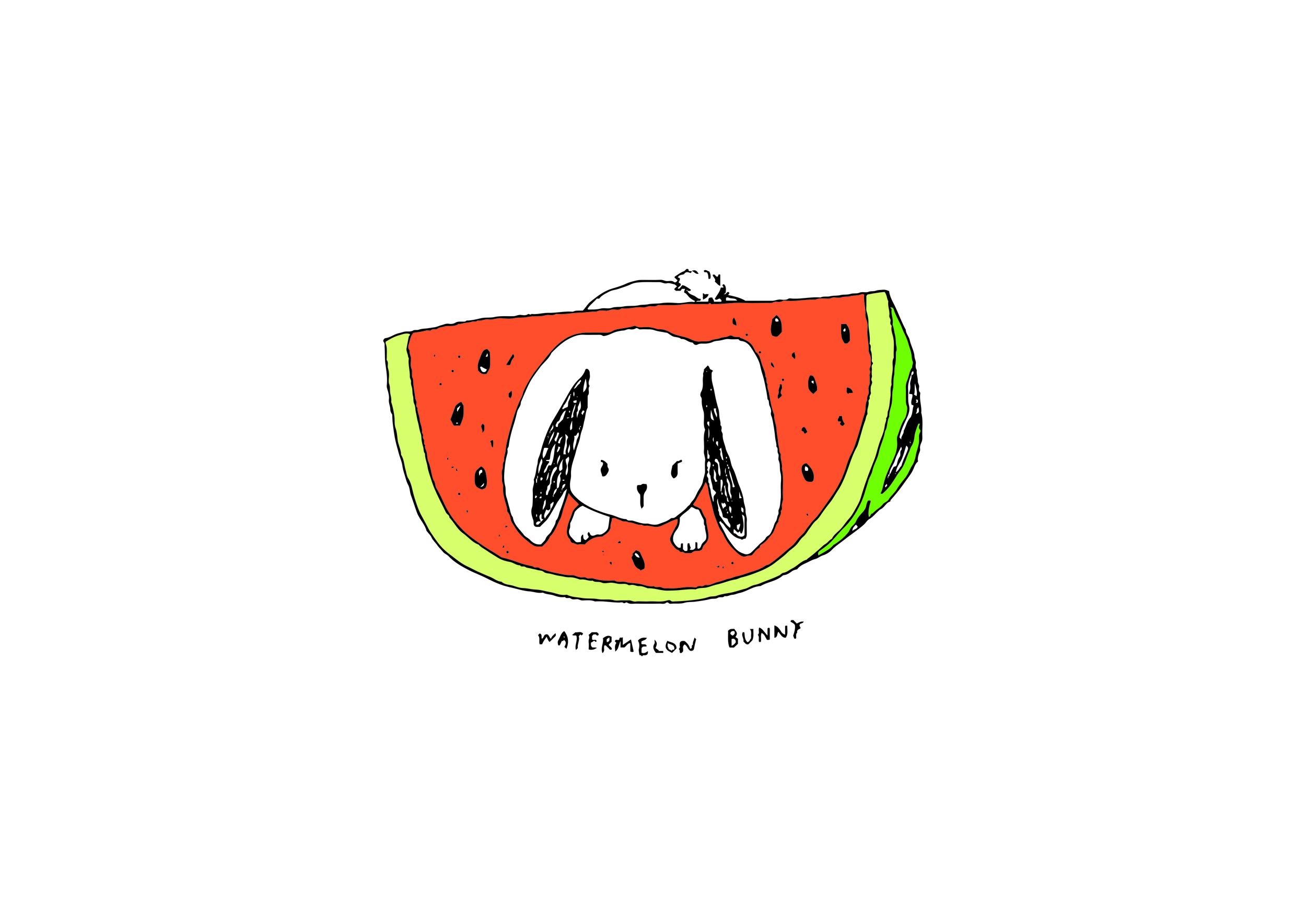 Watermelon Bunny