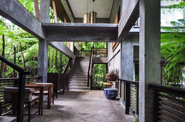 Indoor meets outdoor spaces 🌾🌳🌿🍃🌱