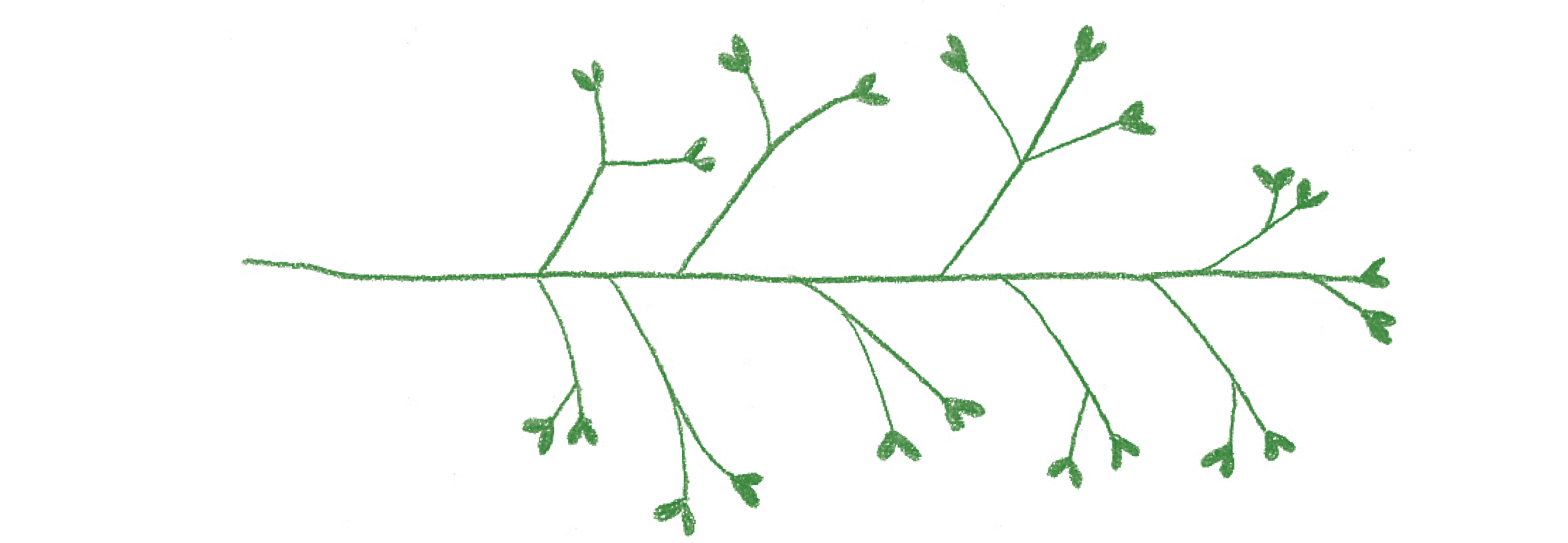 branches5.png