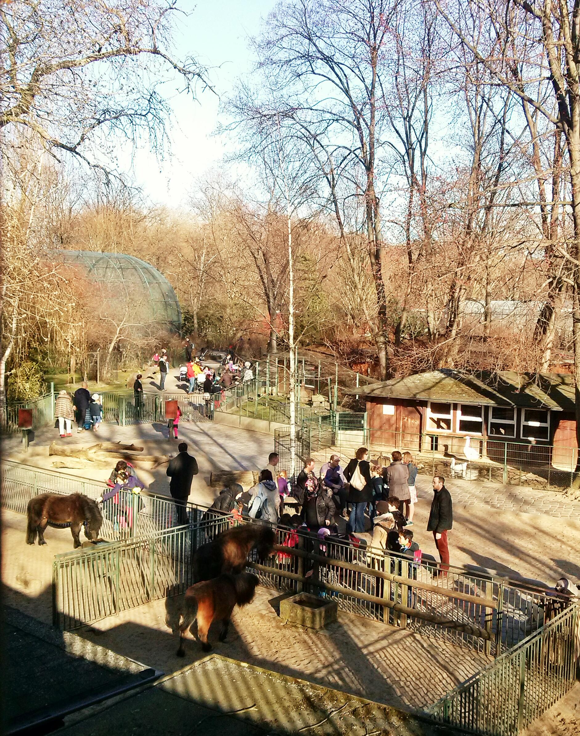 Ο ζωολογικός κήπος.