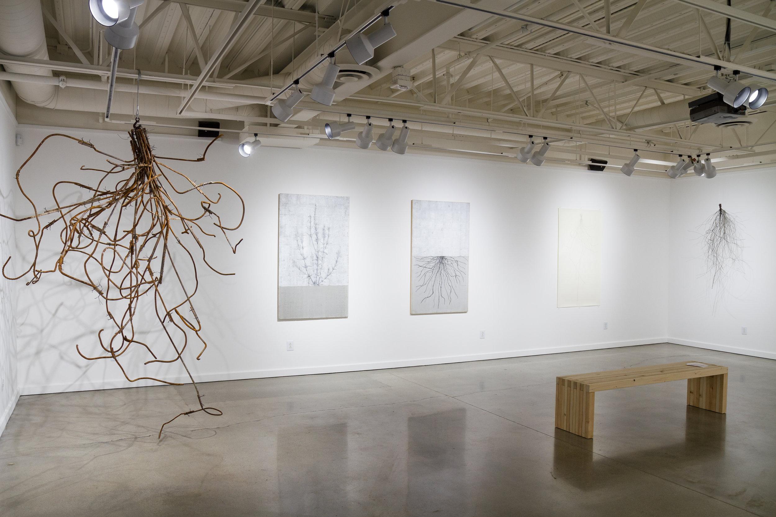 True Vine | Jeremy Cohn Art