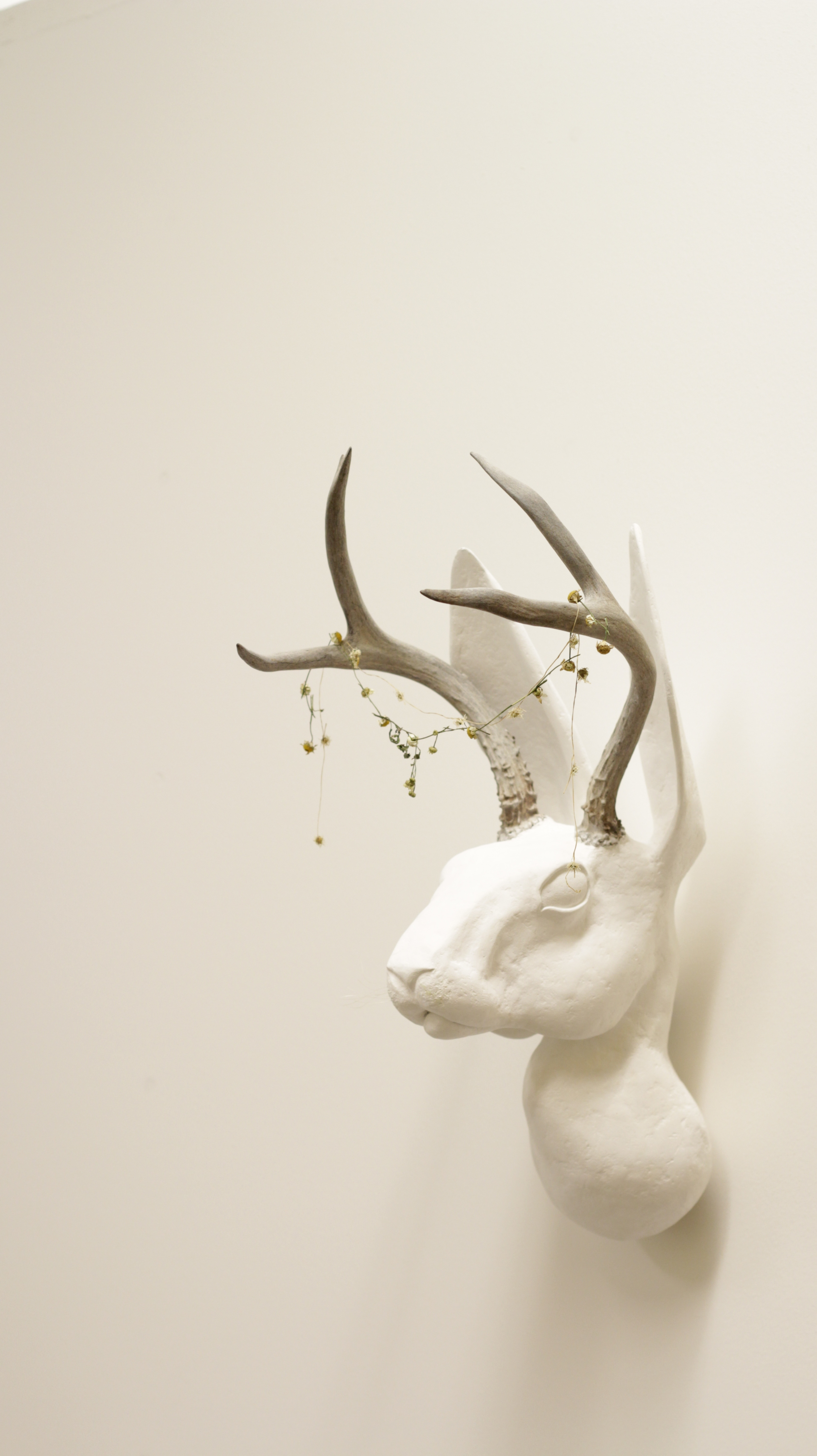 """Illuminated Creatures: Jackalope"""