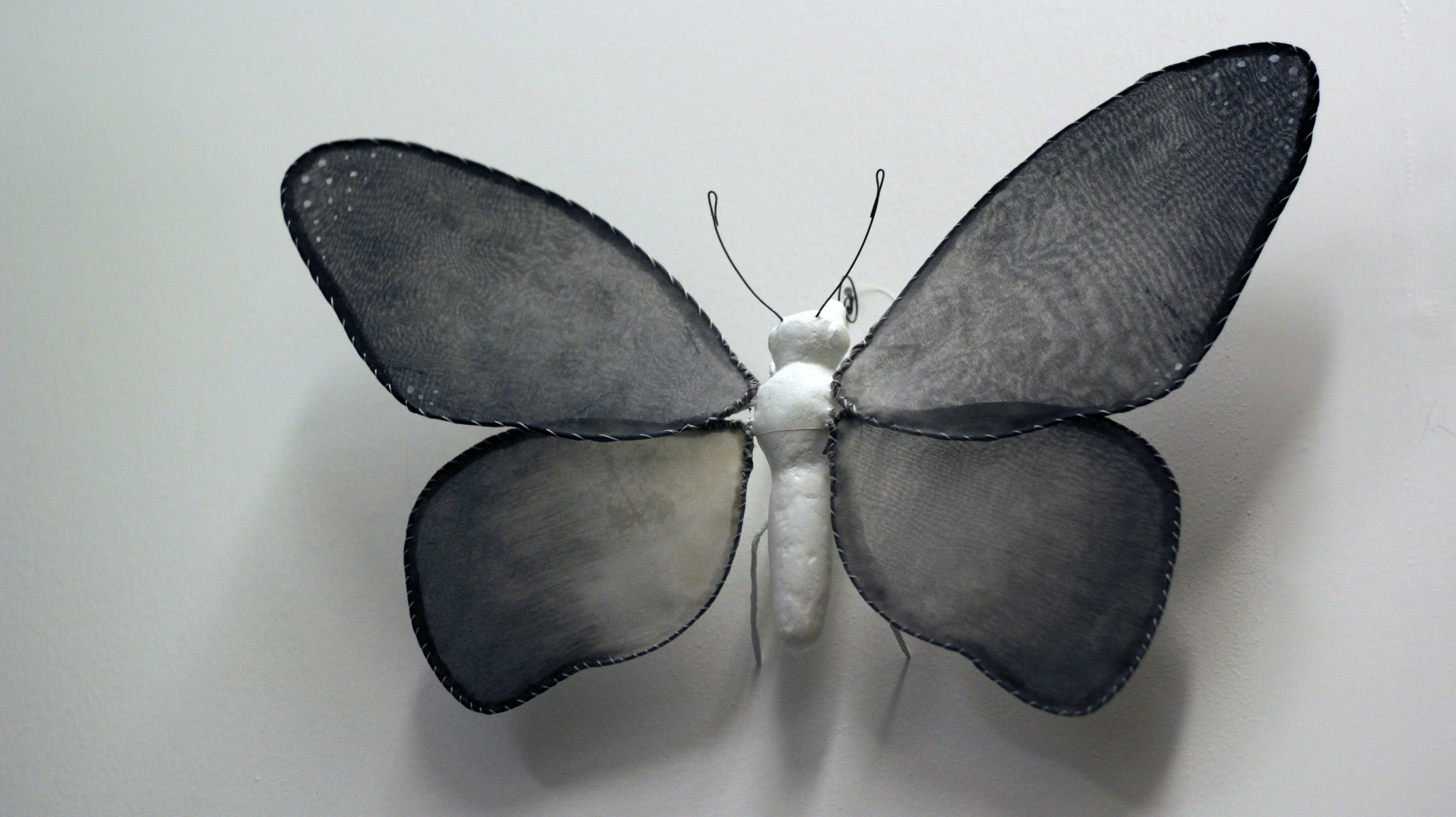"""Illuminated Creatures: Moon Moth V"""