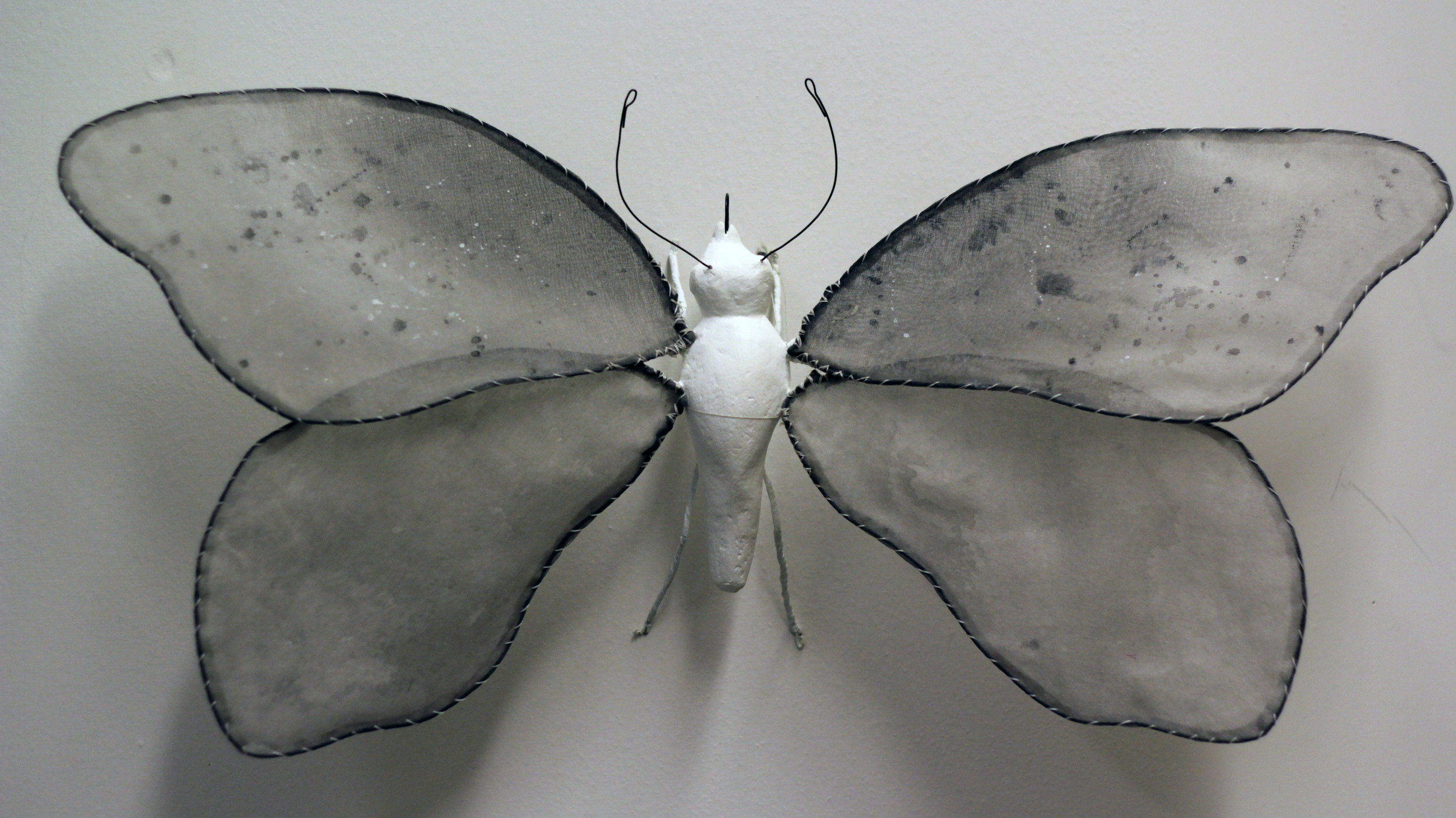 """Illuminated Creatures: Moon Moth I"""
