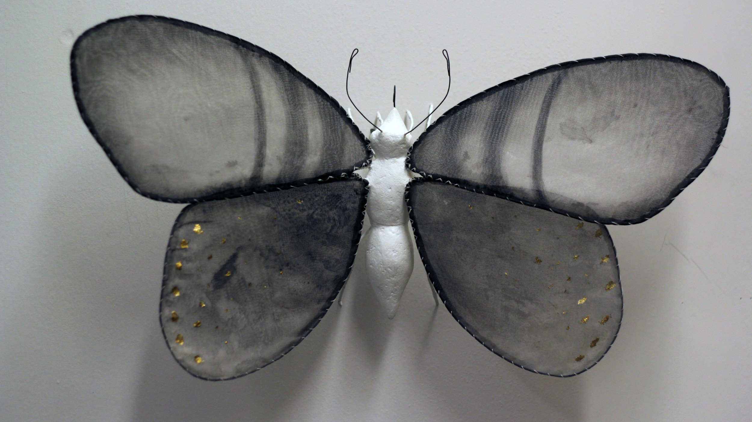 """Illuminated Creatures: Moon Moth II"""