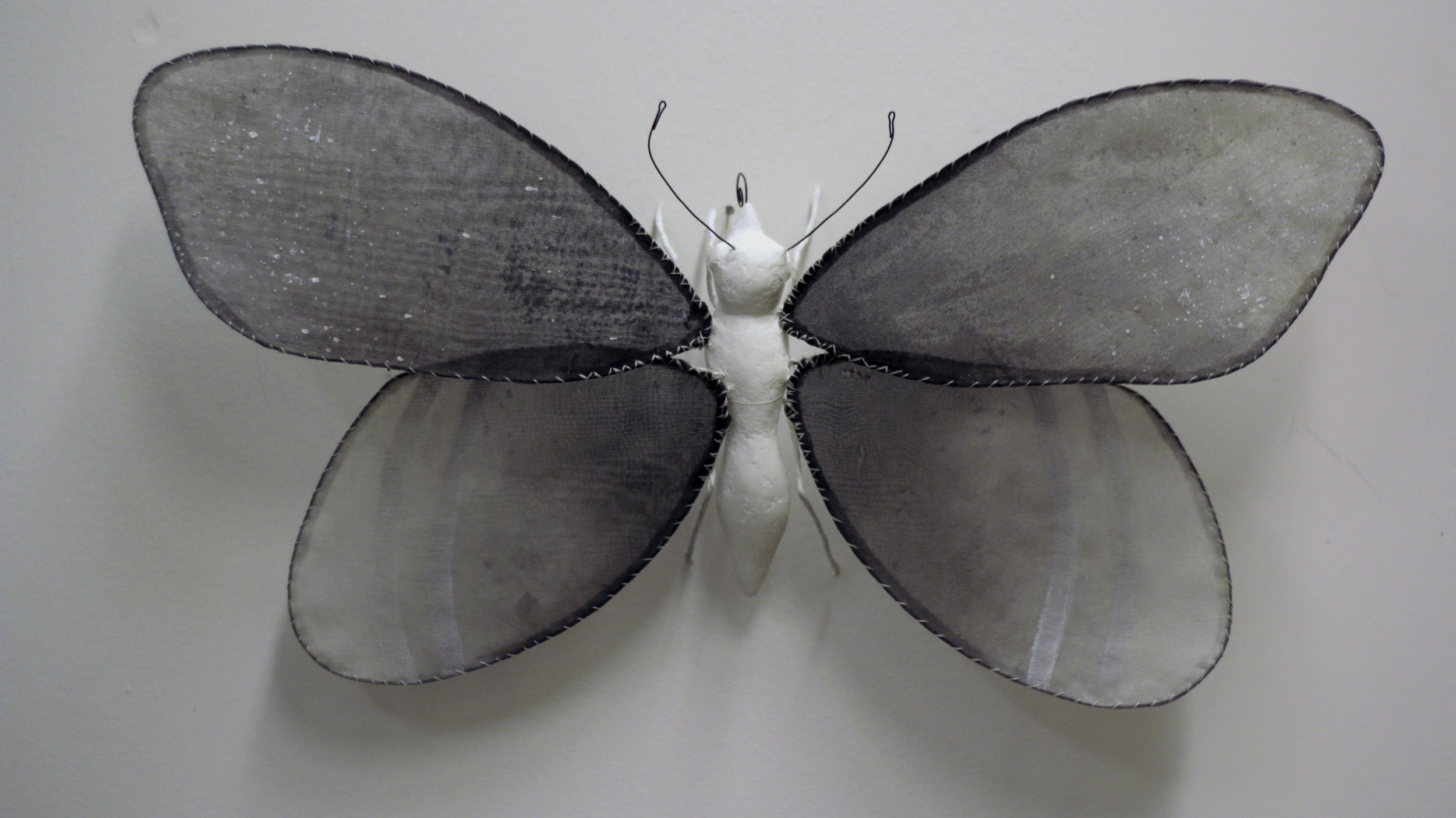 """Illuminated Creatures: Moon Moth III"""