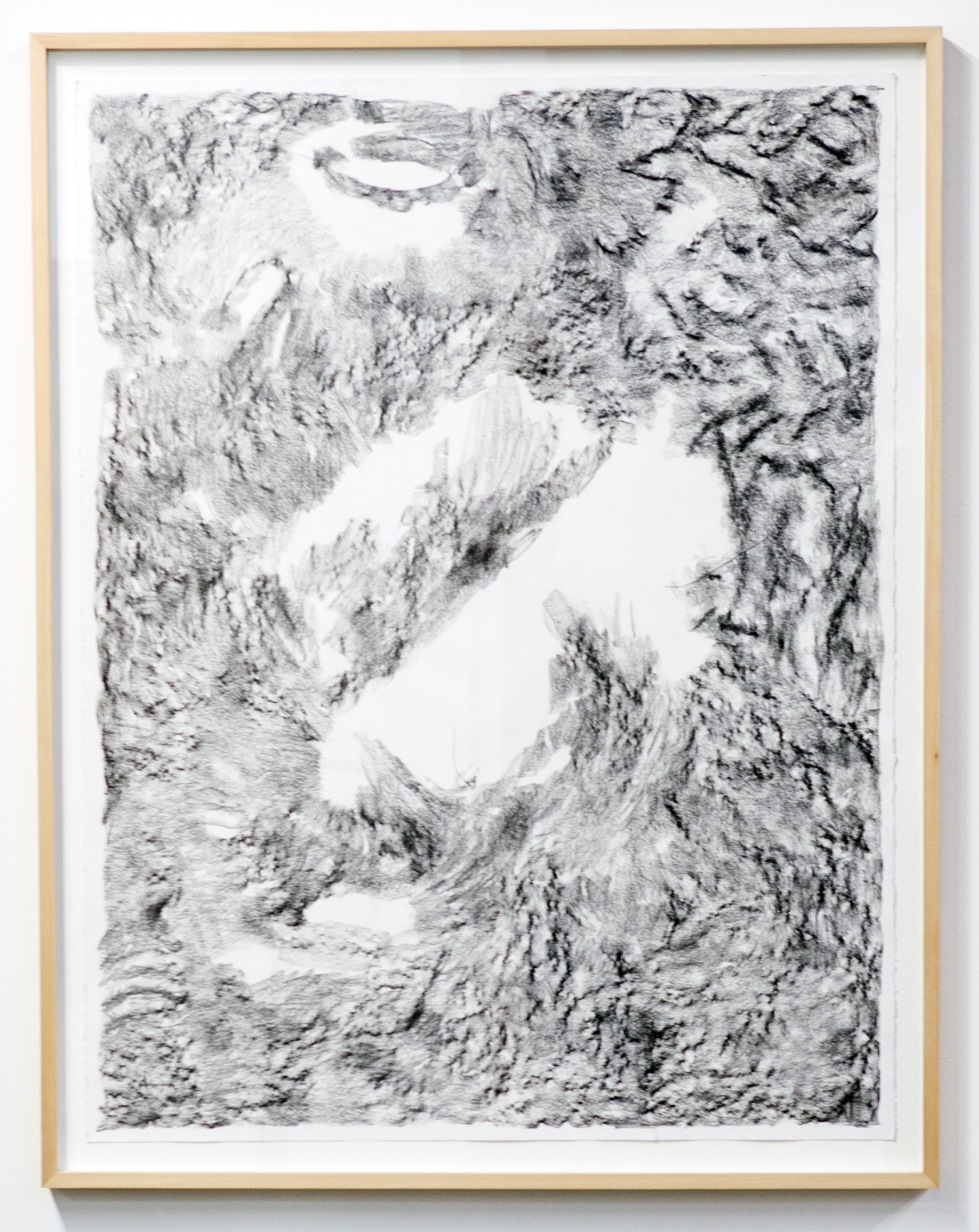 MLSL_01_ElysianPark  , 2015  Conté on rag paper  Paper 49.75 x 38.5 in (126.37 x 97.79 cm) Framed 52.25 x 42.5 in (132.72 x 107.95 cm)