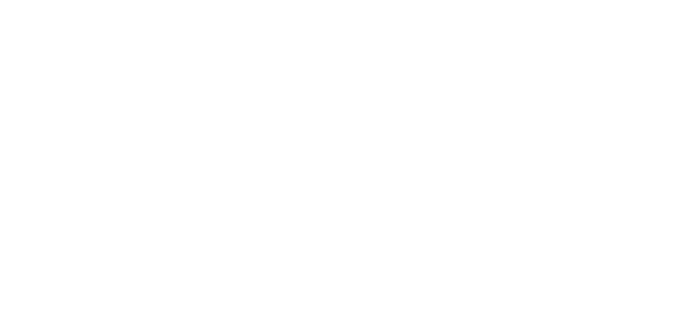 Branding and Packaging Design for Serpent Cider