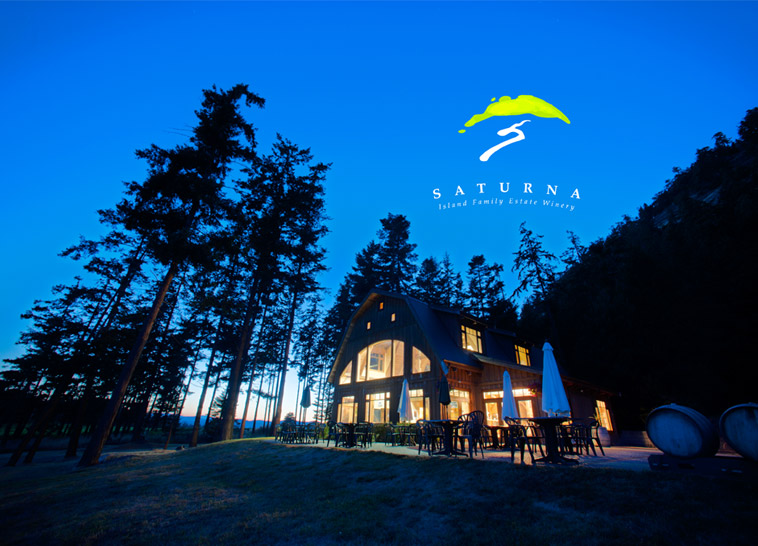 saturna-at-night.jpg