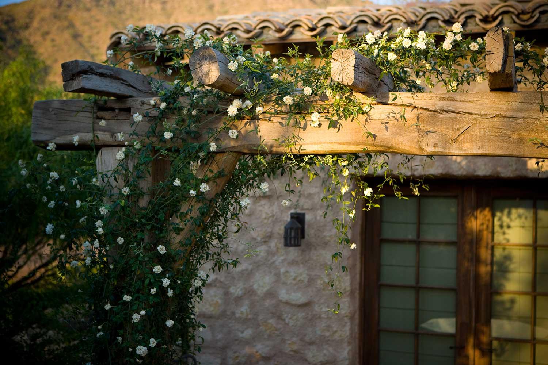 landscaping-ideas-home-landscape-architecture-phoenix-house-img05.jpg