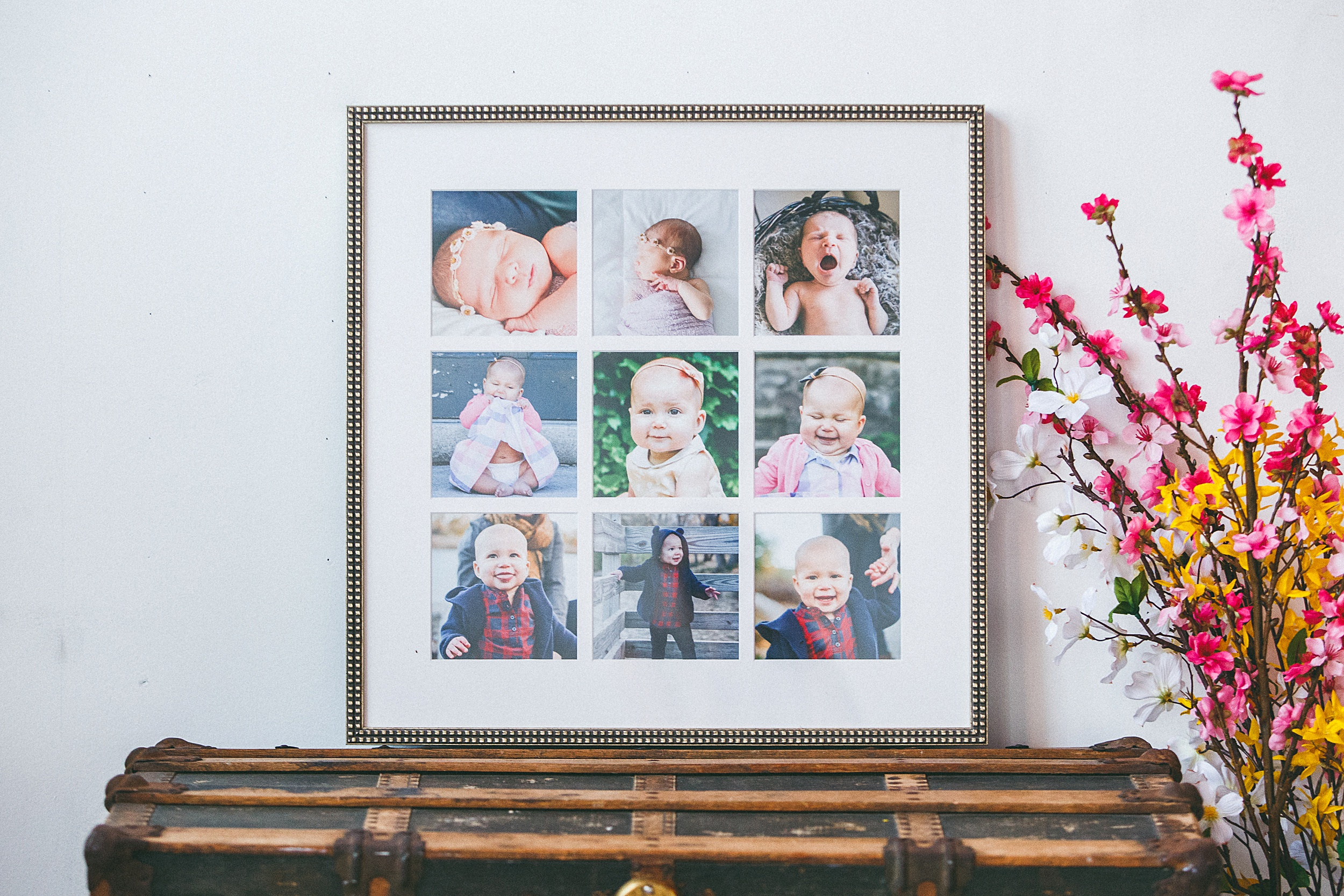 Kelly_Kester_Photography_Baby_Plan_Portrait_Frame_Collage.jpg