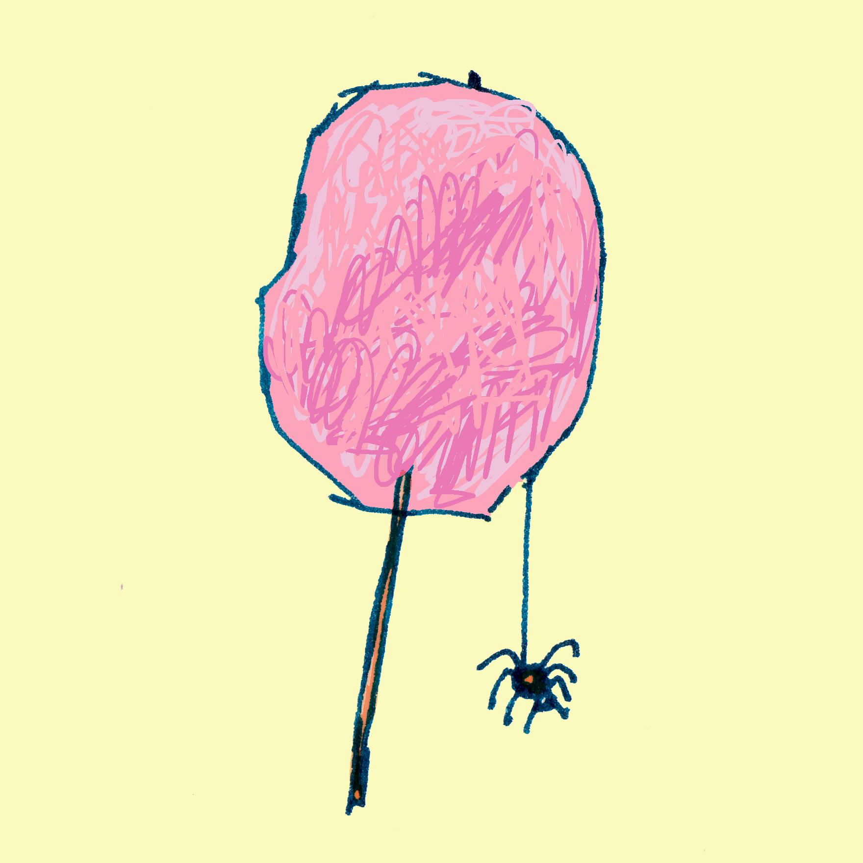 suikerspin.jpg