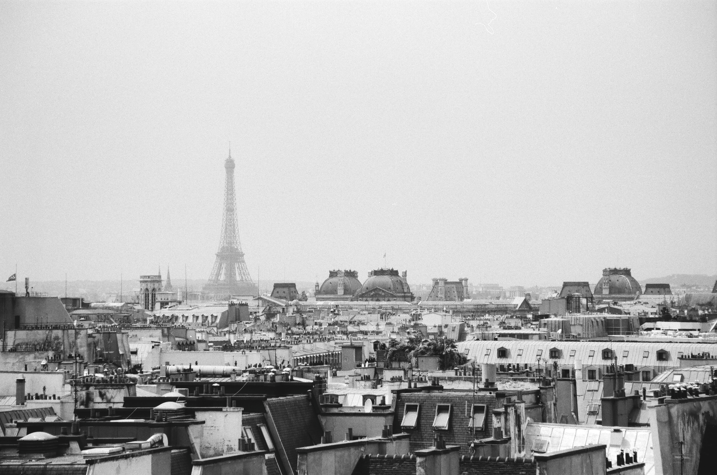 Paris - France B&W Image 7.jpg