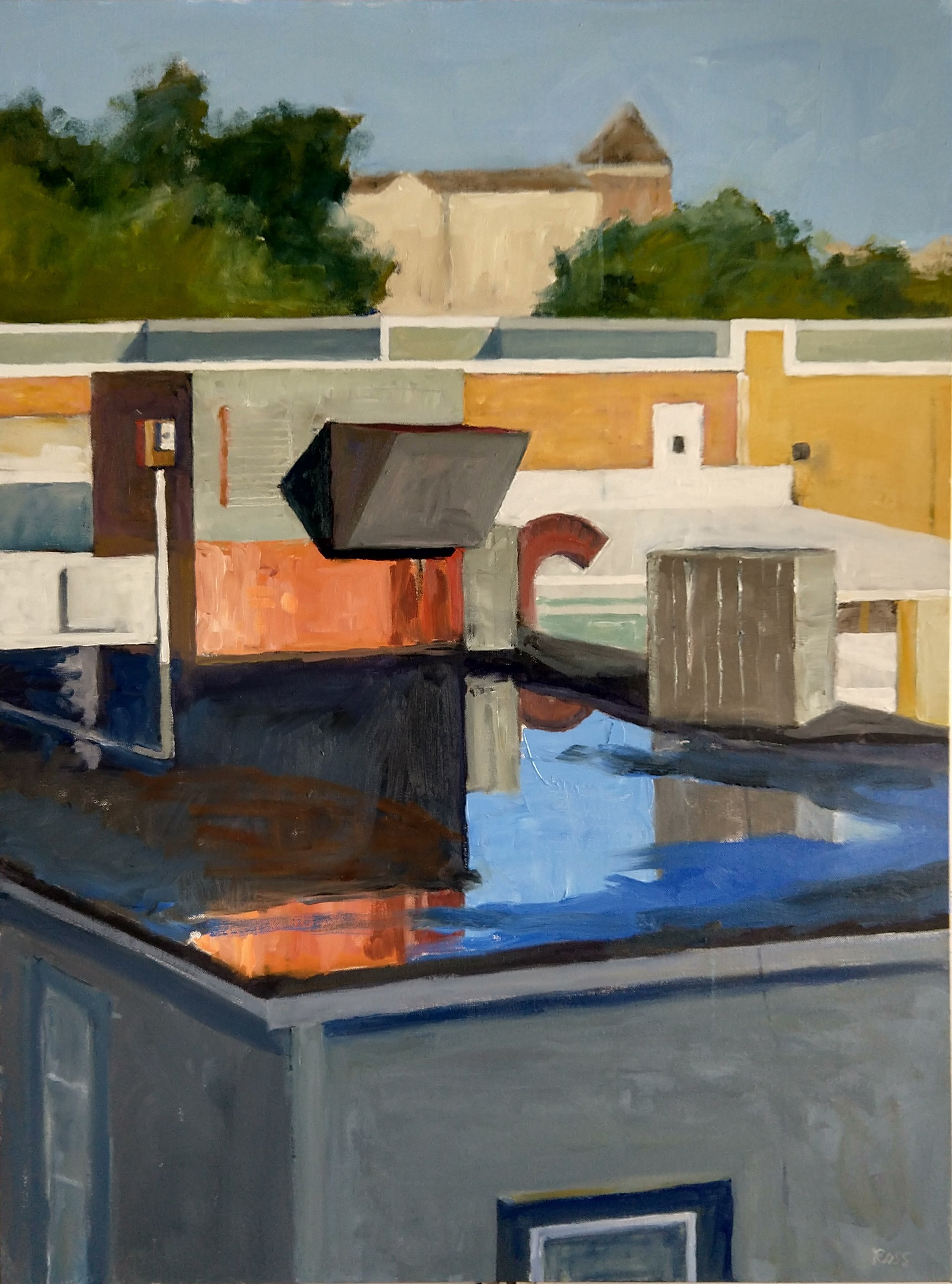 Rooftops after Rain