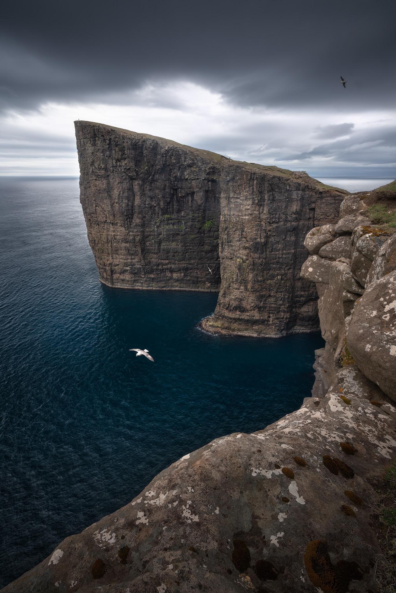 bird-cliffs.jpg