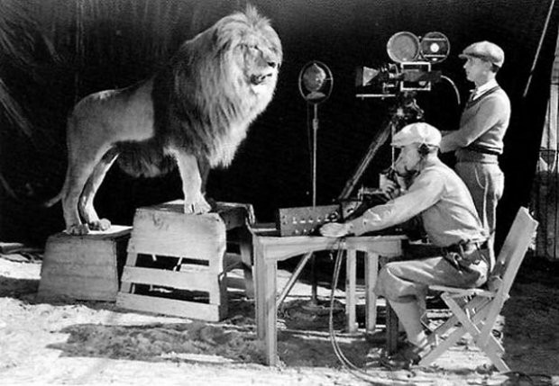 The twitter account @historicalpics is a constantly inspiring daily archive showcasing the most unique and rare images I've ever seen. This one:A cameraman and a sound technician record the roar of Leo the Lion for MGM's famous movie logo. Photograph: John Kobal Foundation/Getty Images.