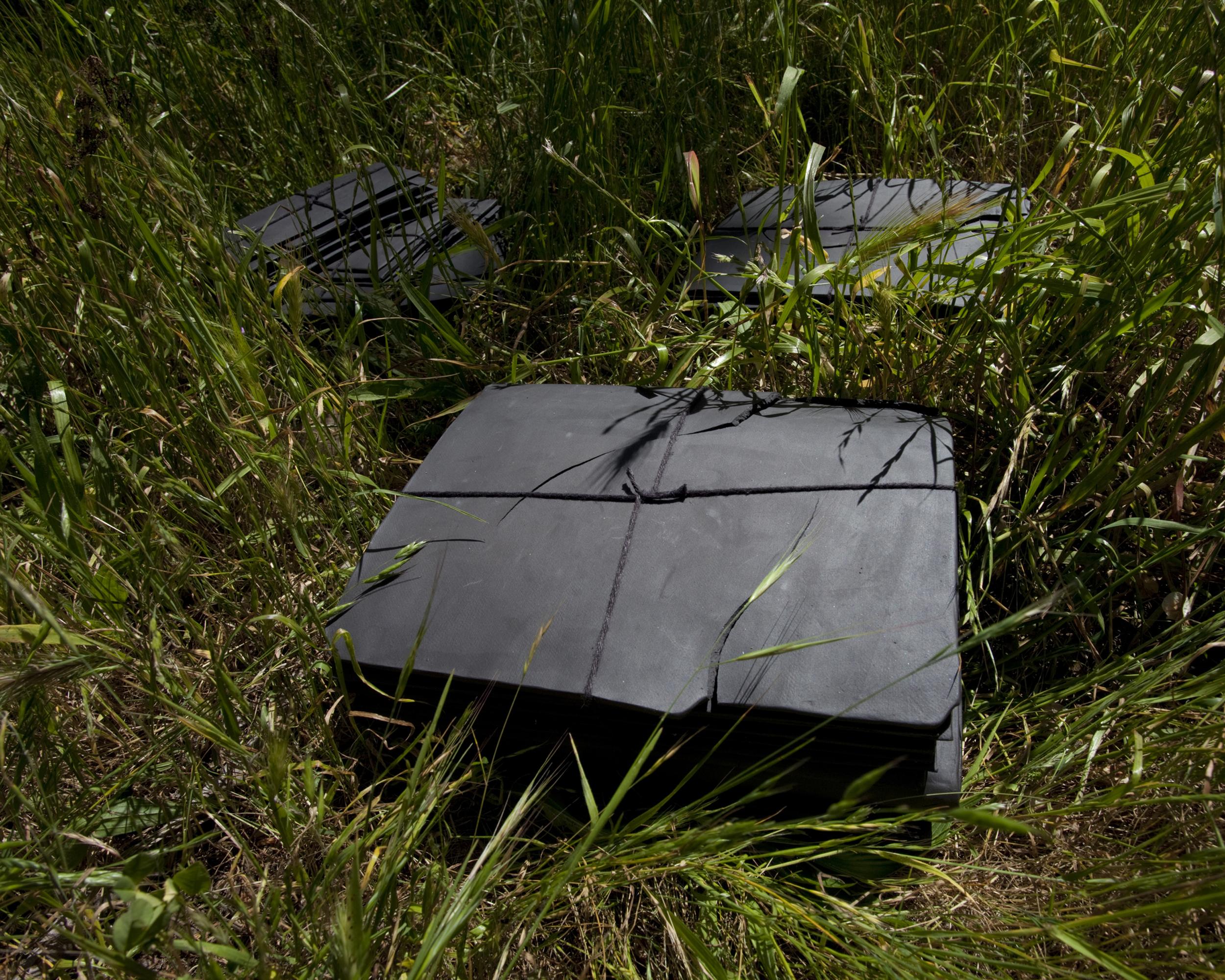 Osborne_Sandra_black file 3.jpg