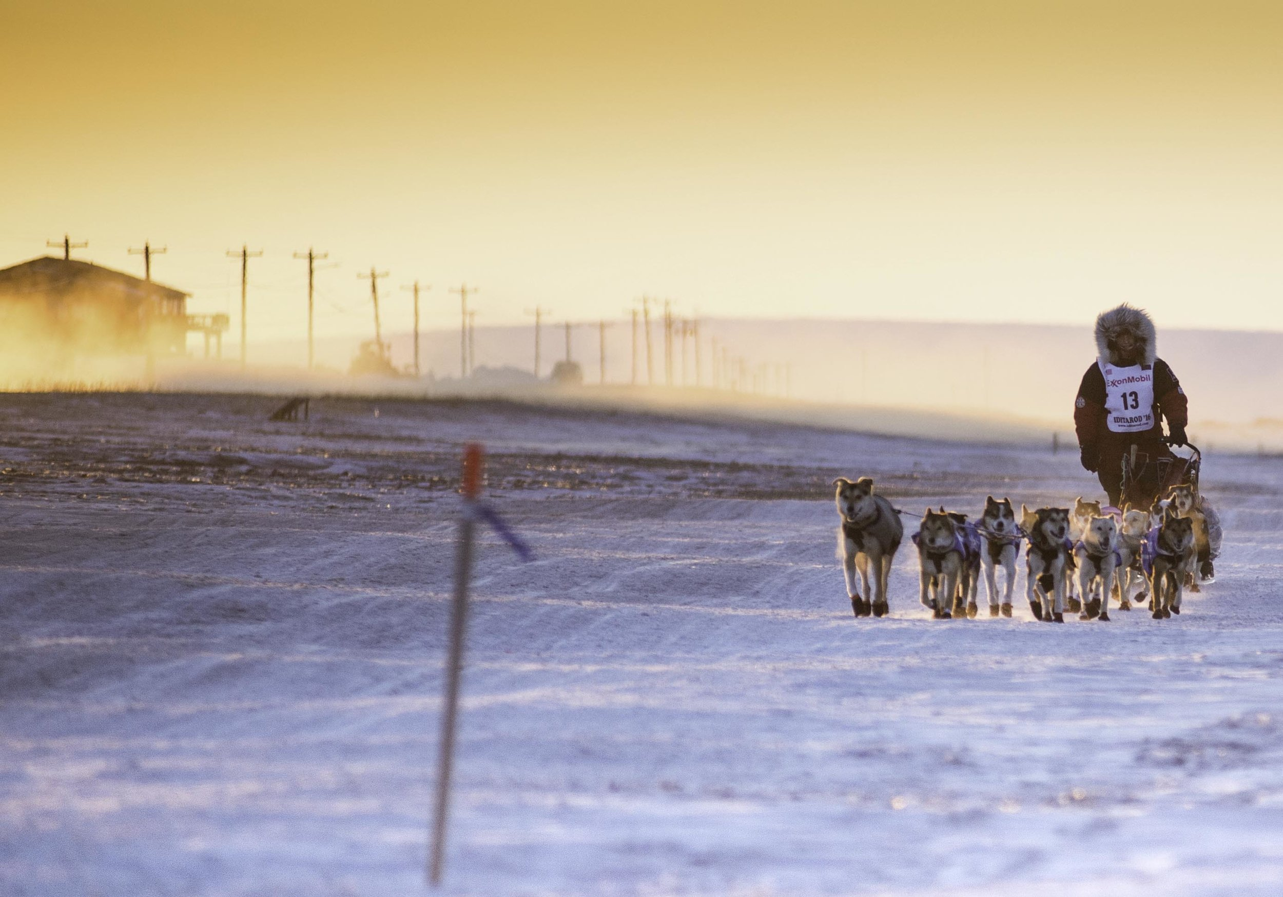 Iditarod Race Finish in Nome