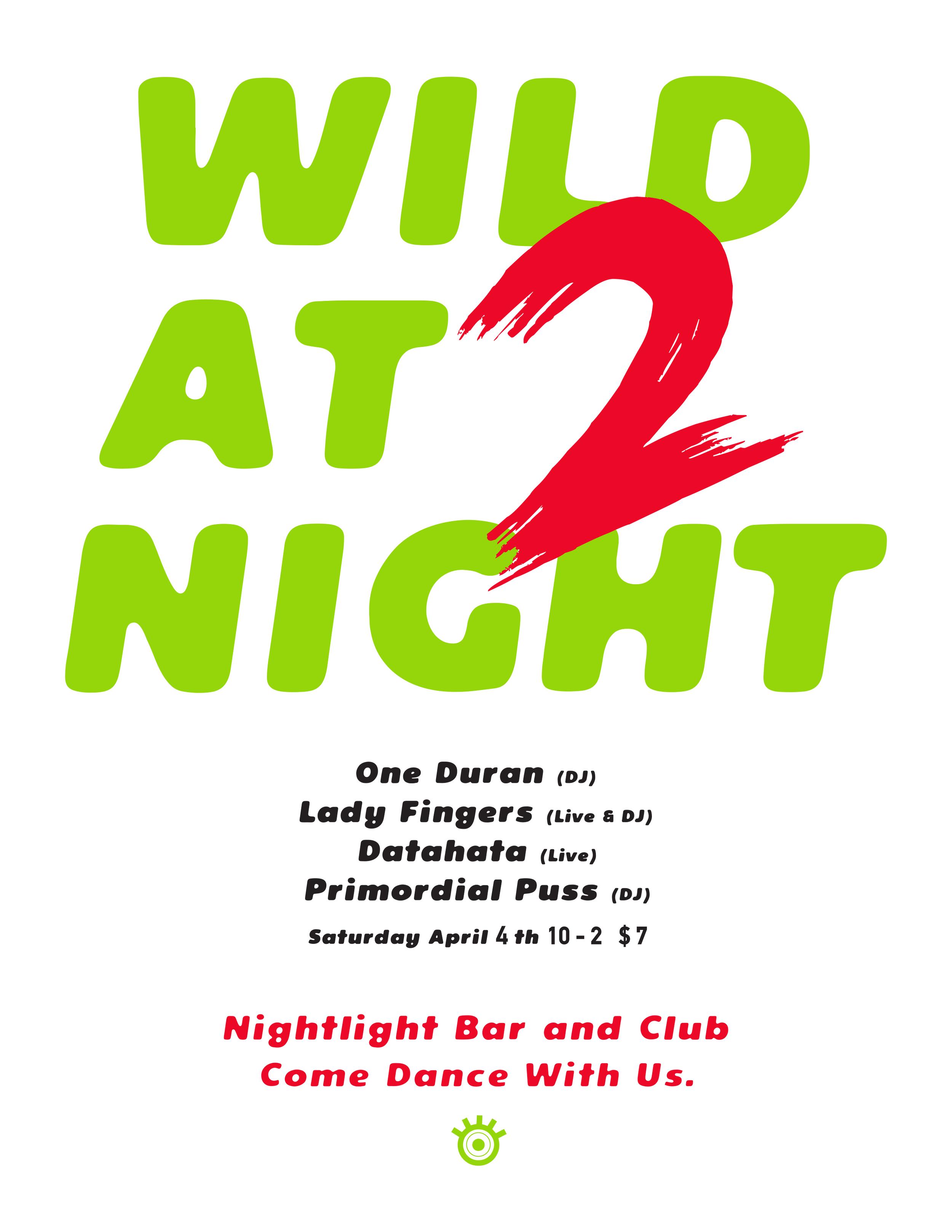 Wild at Night 2 Poster Final.jpg