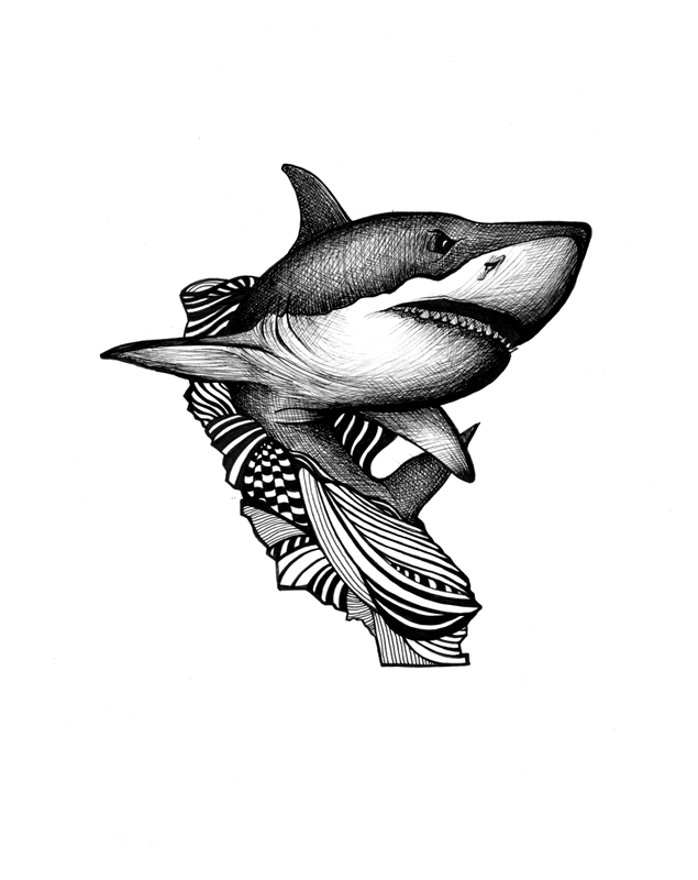 Sharkalifornia