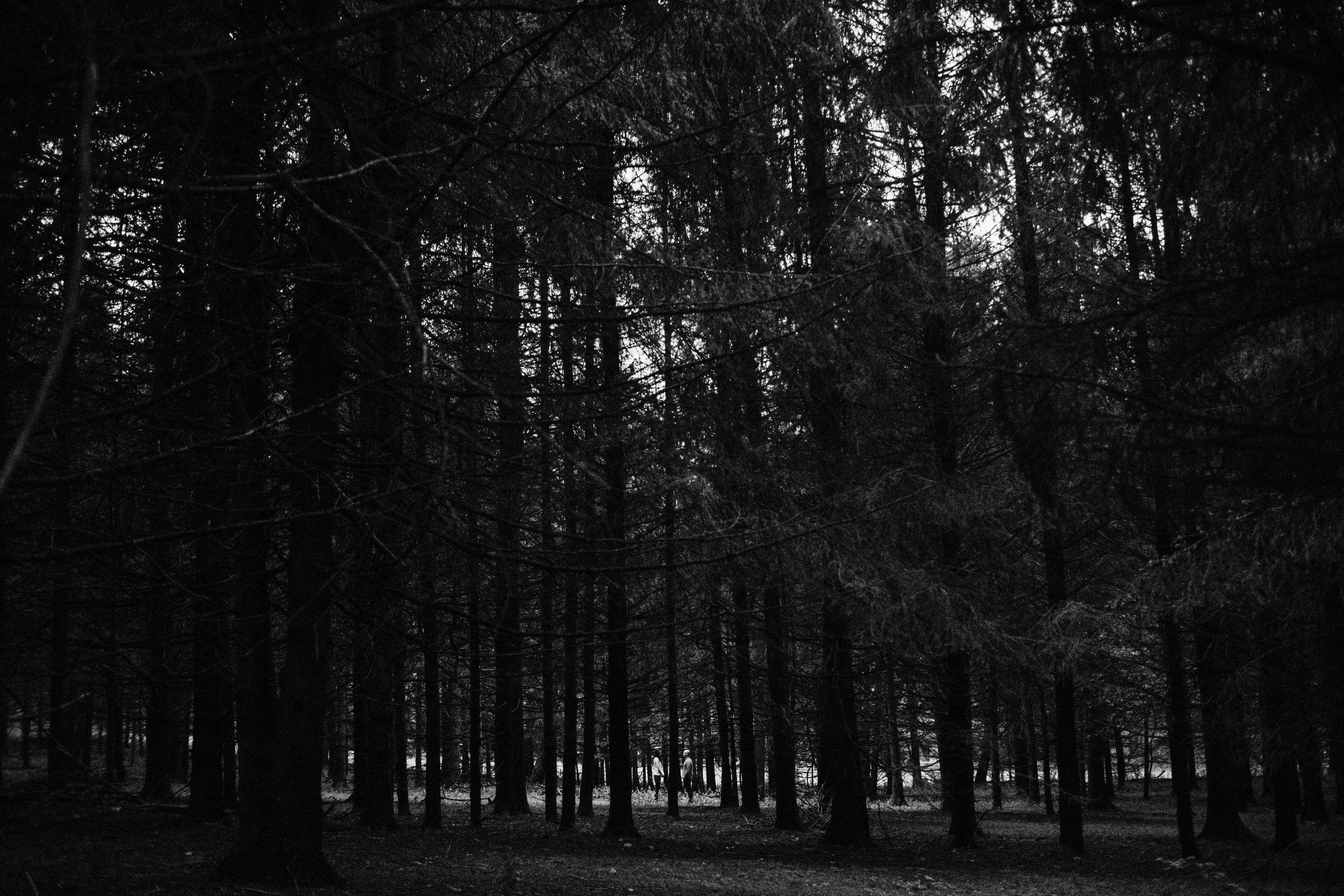 AARENLEEPHOTOGRAPHYLLC-1076-27.jpg