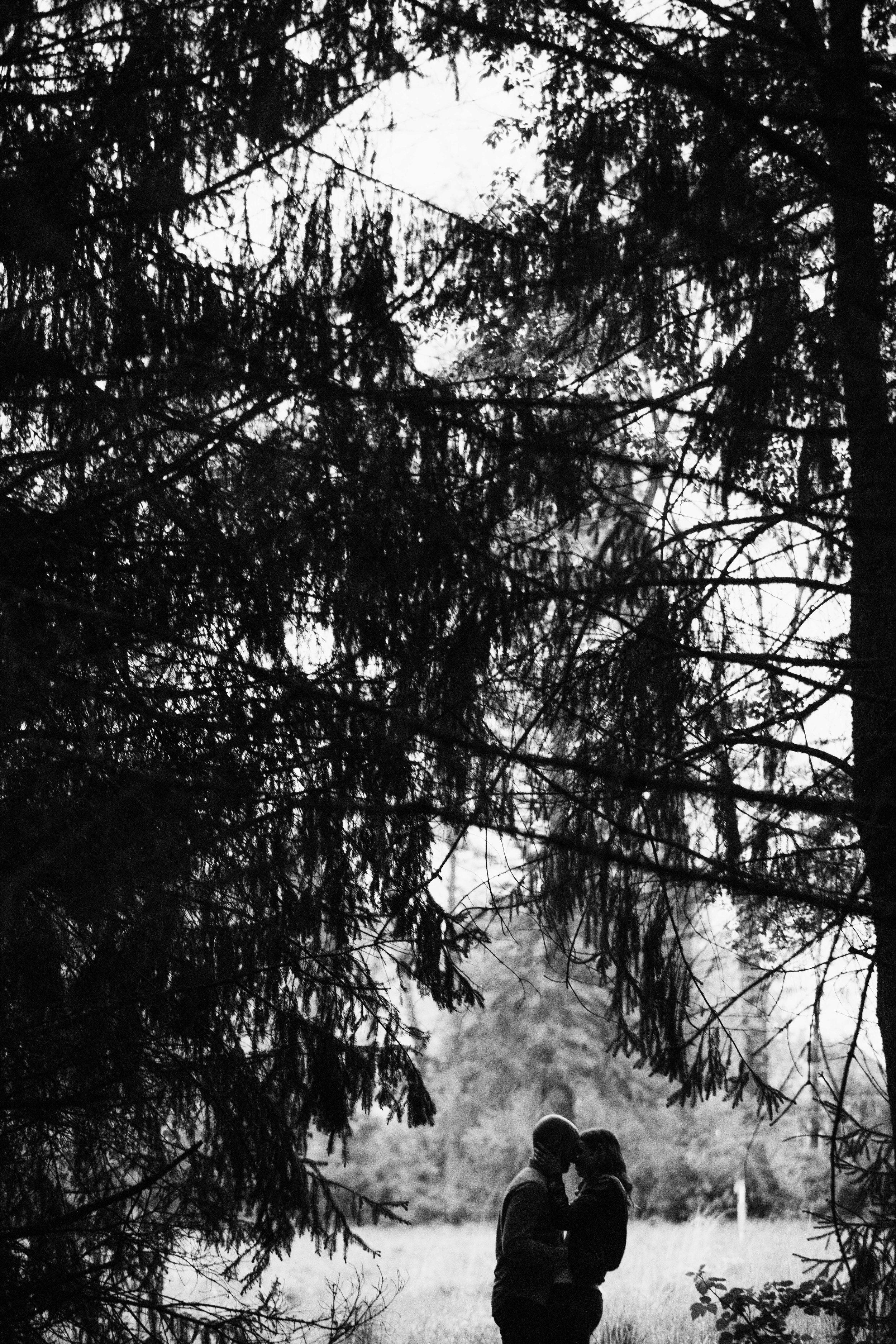 AARENLEEPHOTOGRAPHYLLC-968-25.jpg