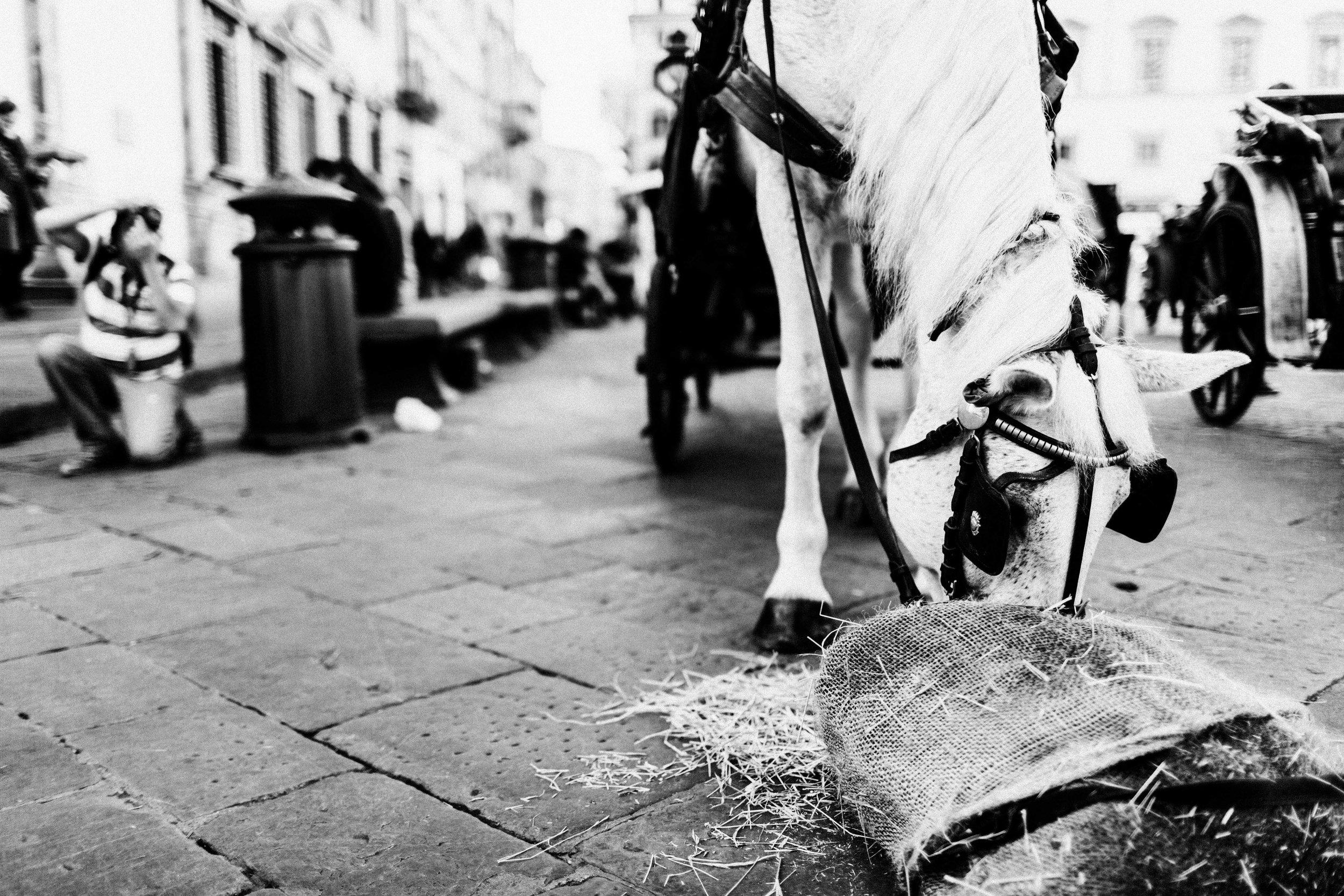 ITALY2015-372-10.jpg