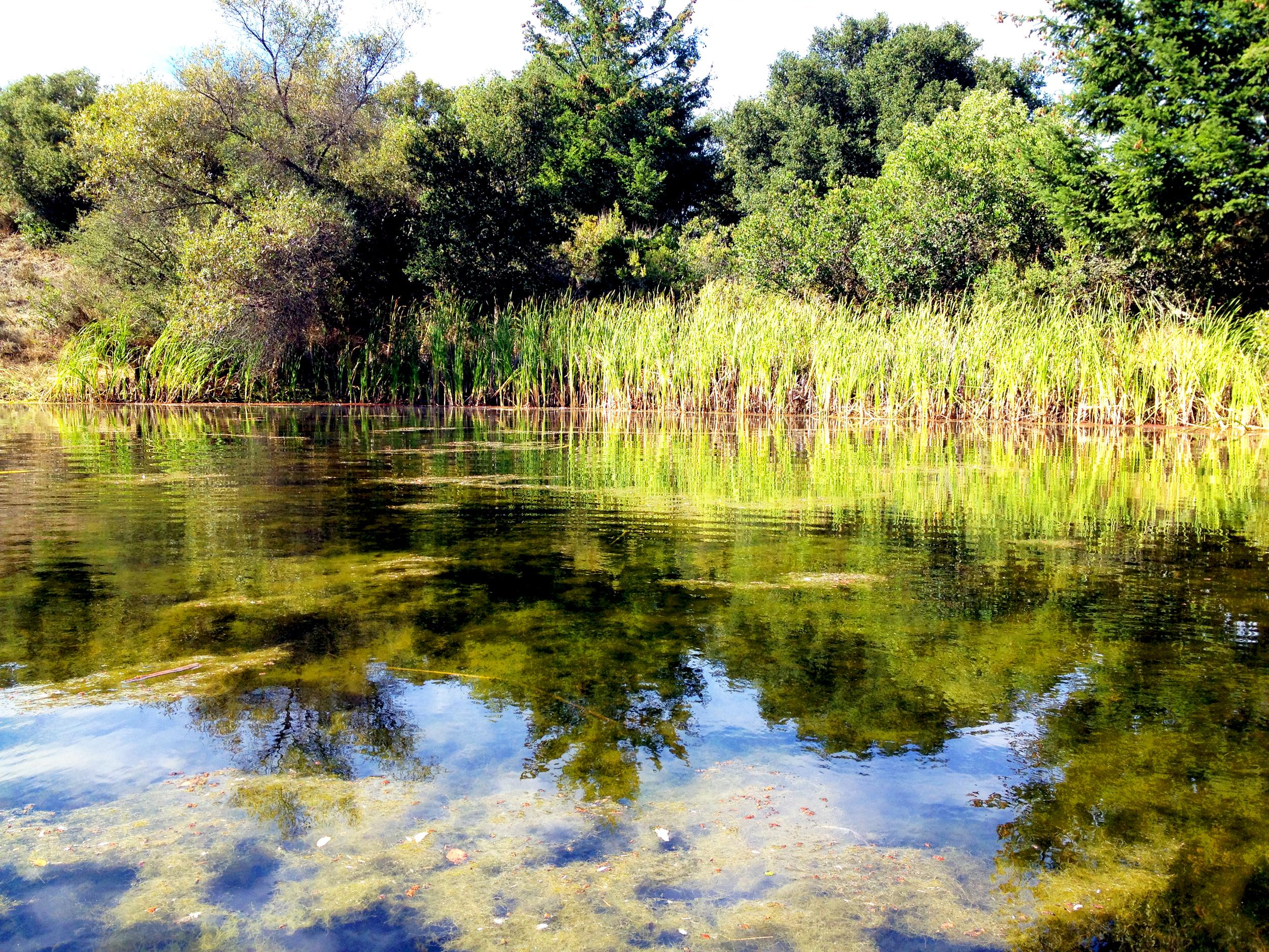 Hidden Lake 2.jpg