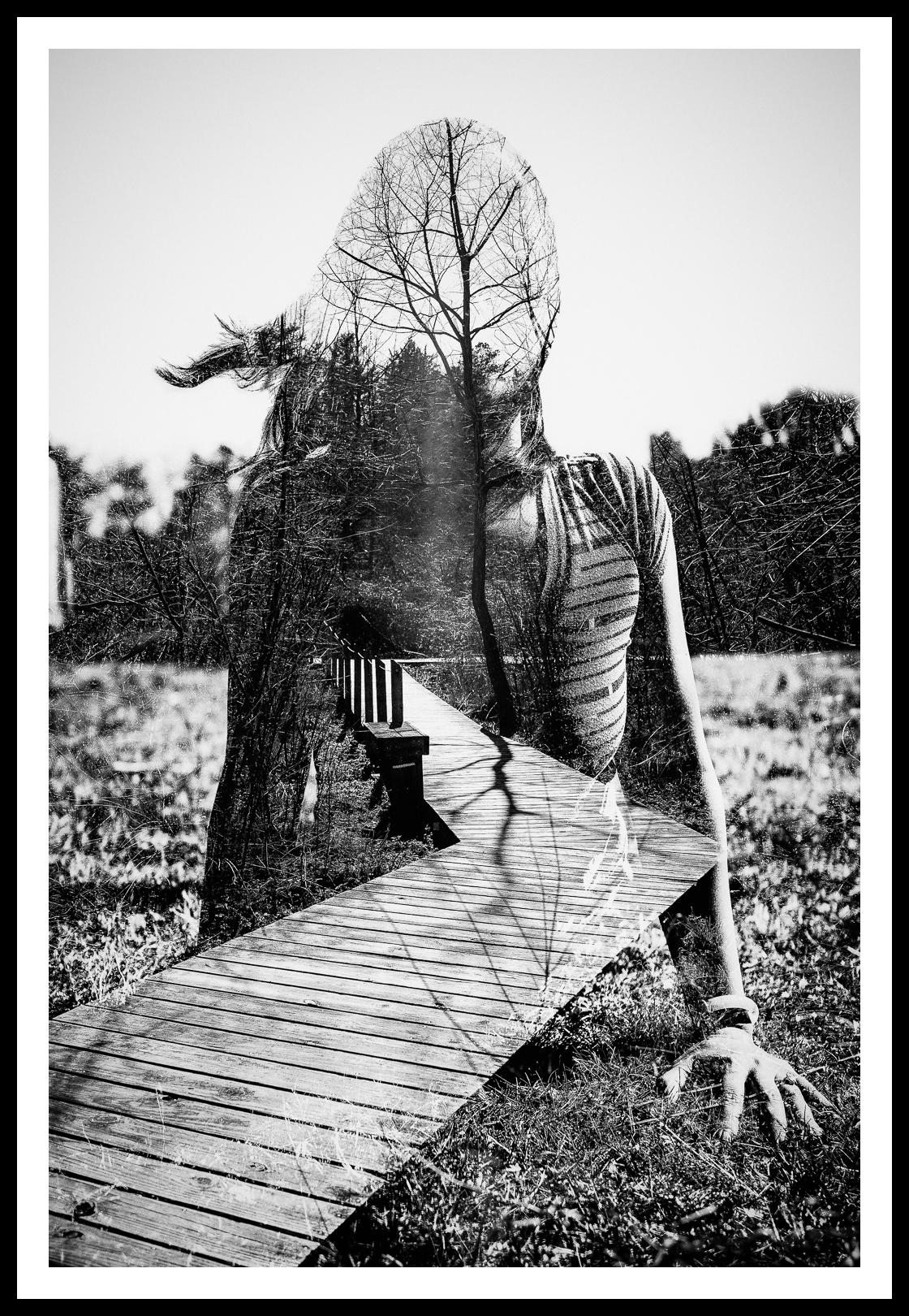 blend-Edit-Edit-2.jpg
