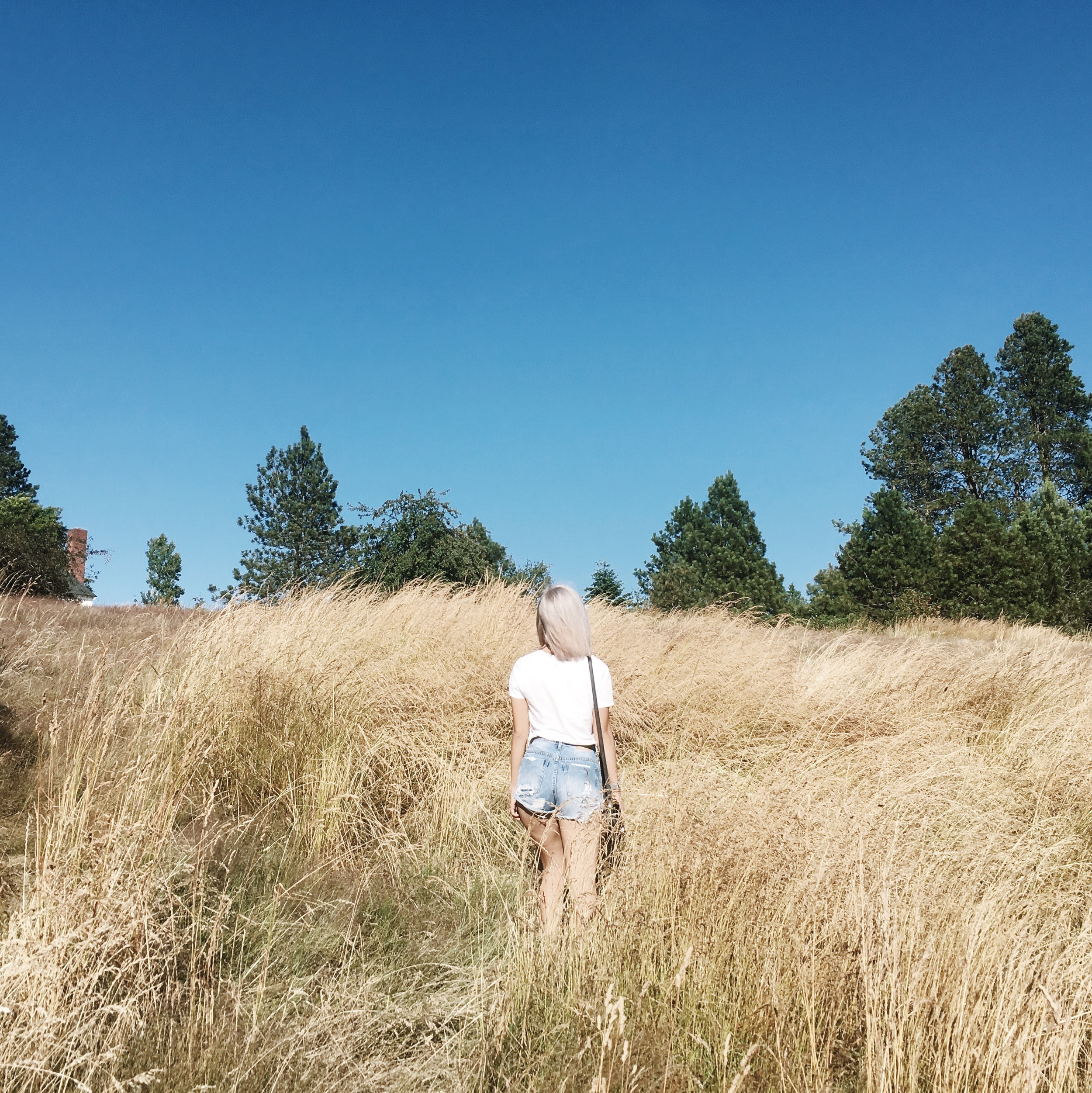 Discovery Park Seattle By Lisa Linh Lisa Linh