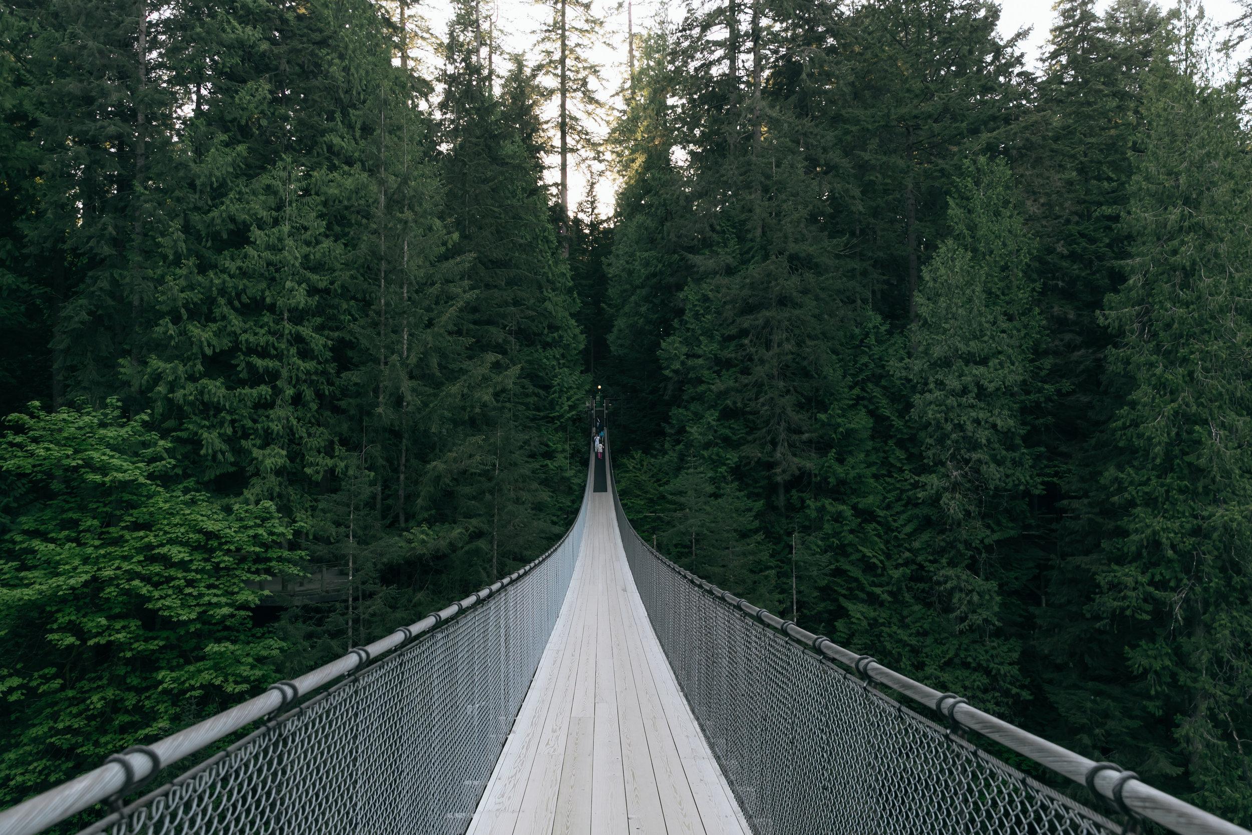 Suspension Bridge - Capilano