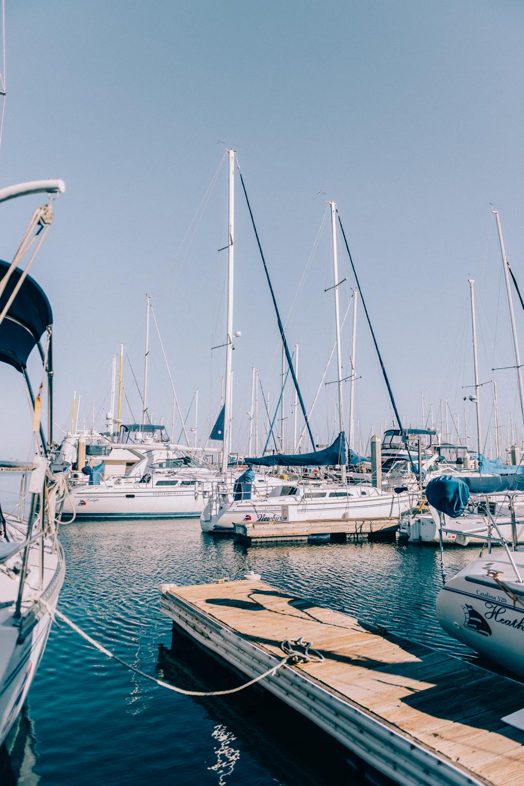 2. Go Whale Watching - Santa Barbara Sailing Center