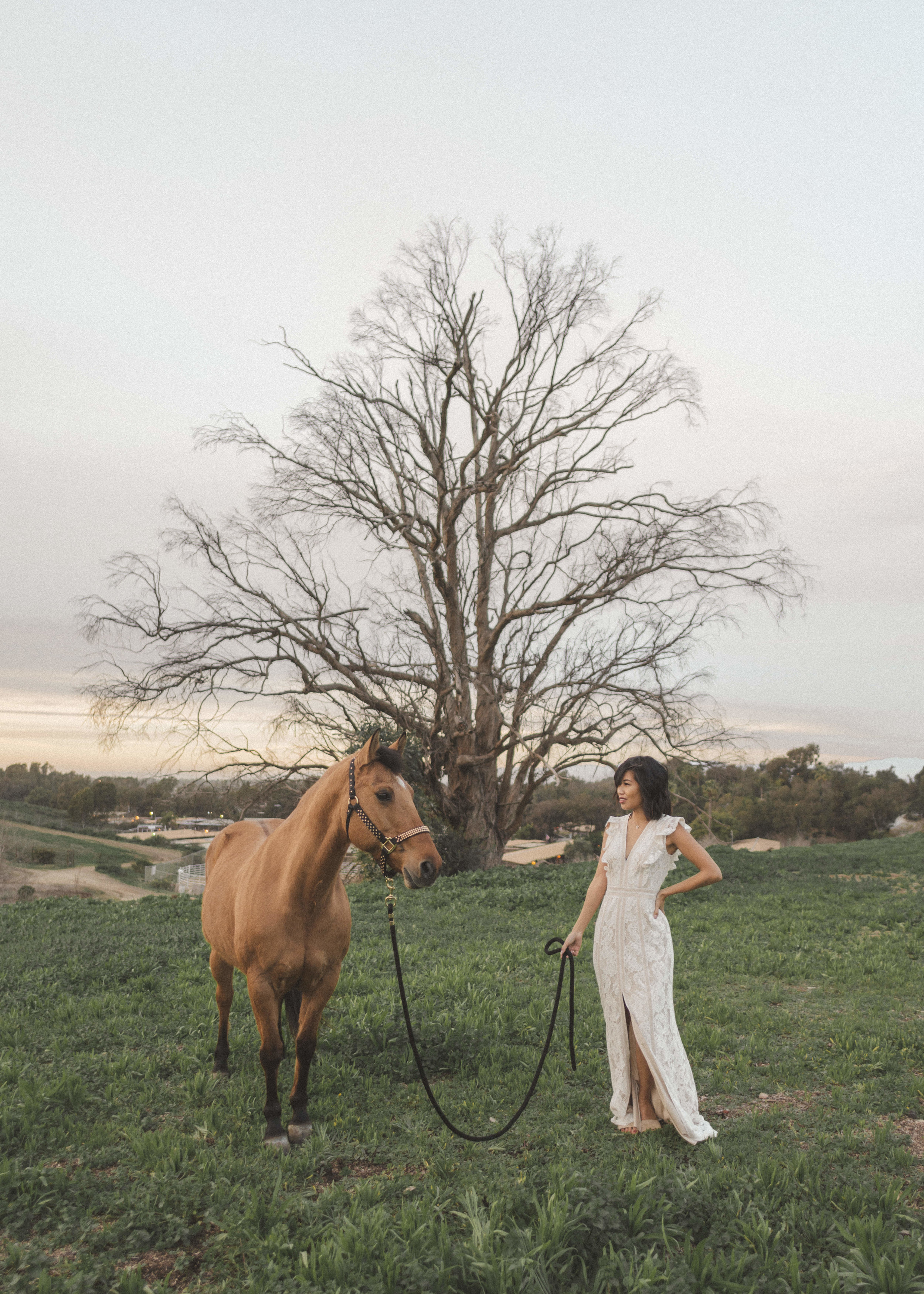 horse-play-rentals-by-lisa-linh